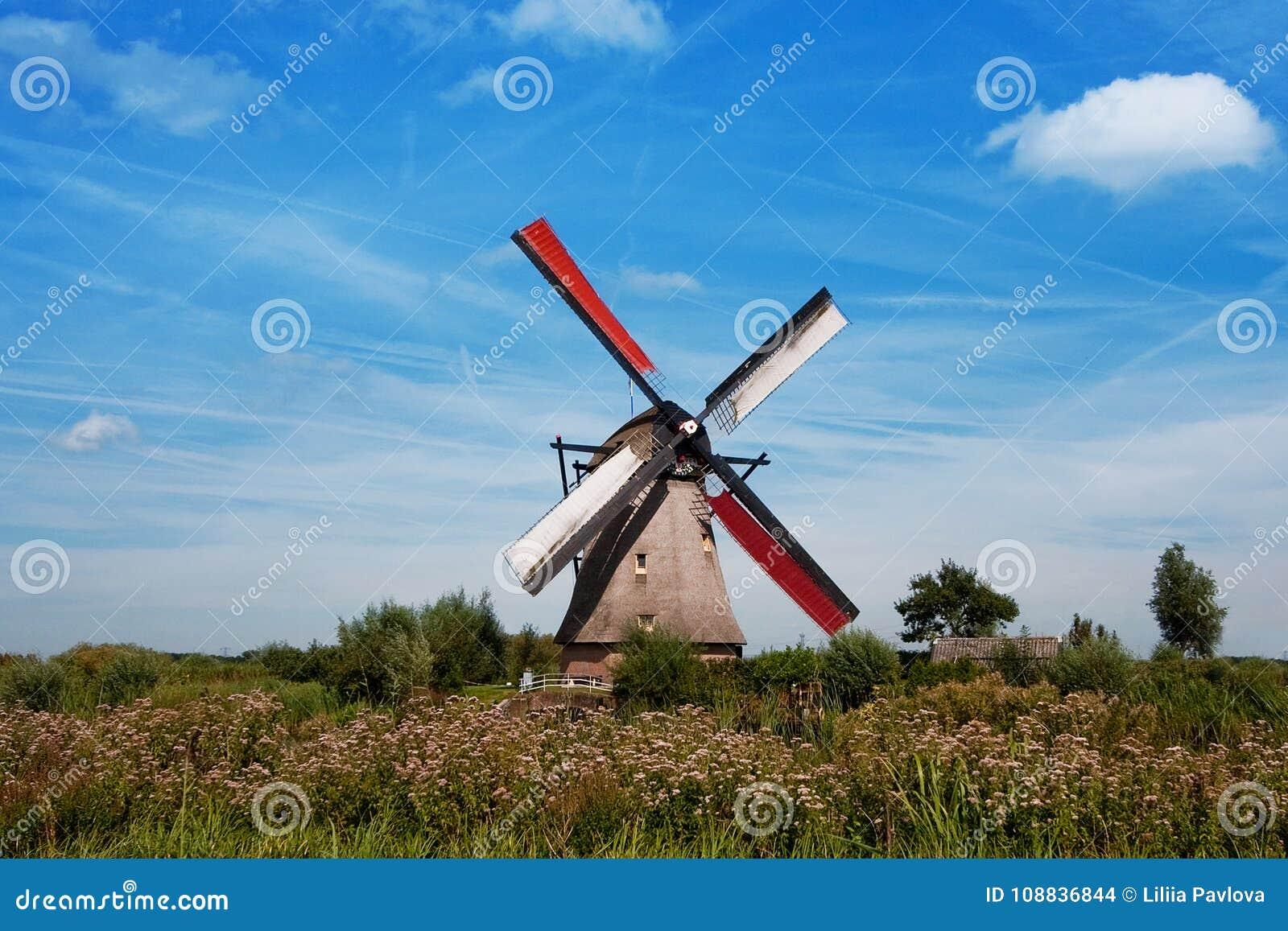在市乌得勒支附近防御德哈尔在荷兰在夏天