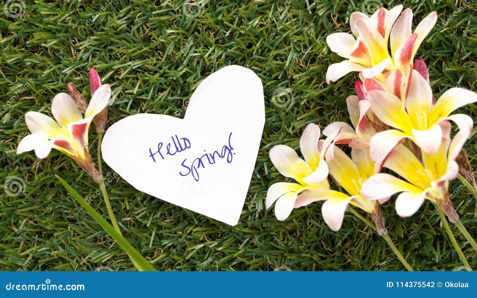 在心脏形状的笔记与词你好春天的! 与花