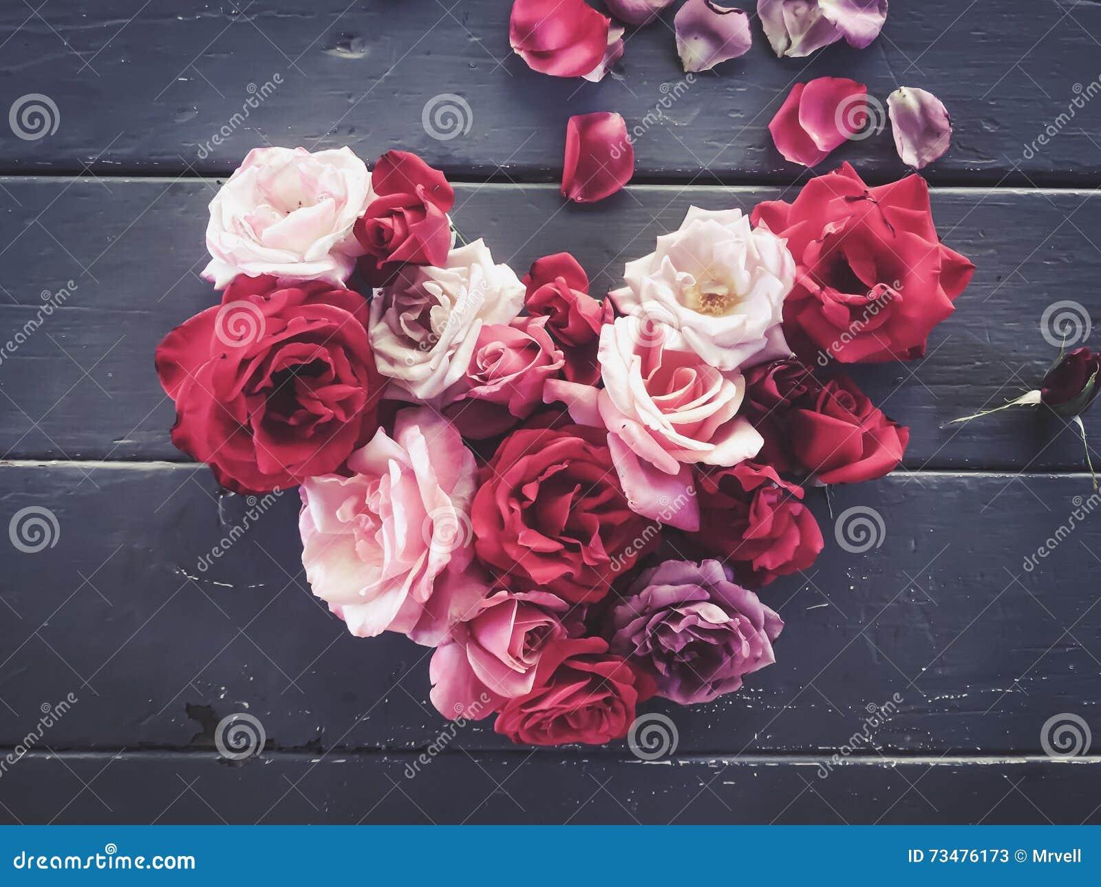 在心脏形状的红色和桃红色玫瑰
