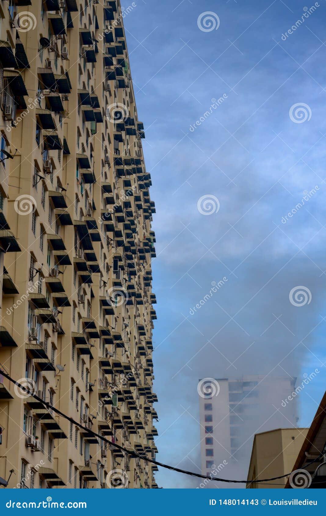 在房屋建设高层团体的蚊子令人退避的熏蒸