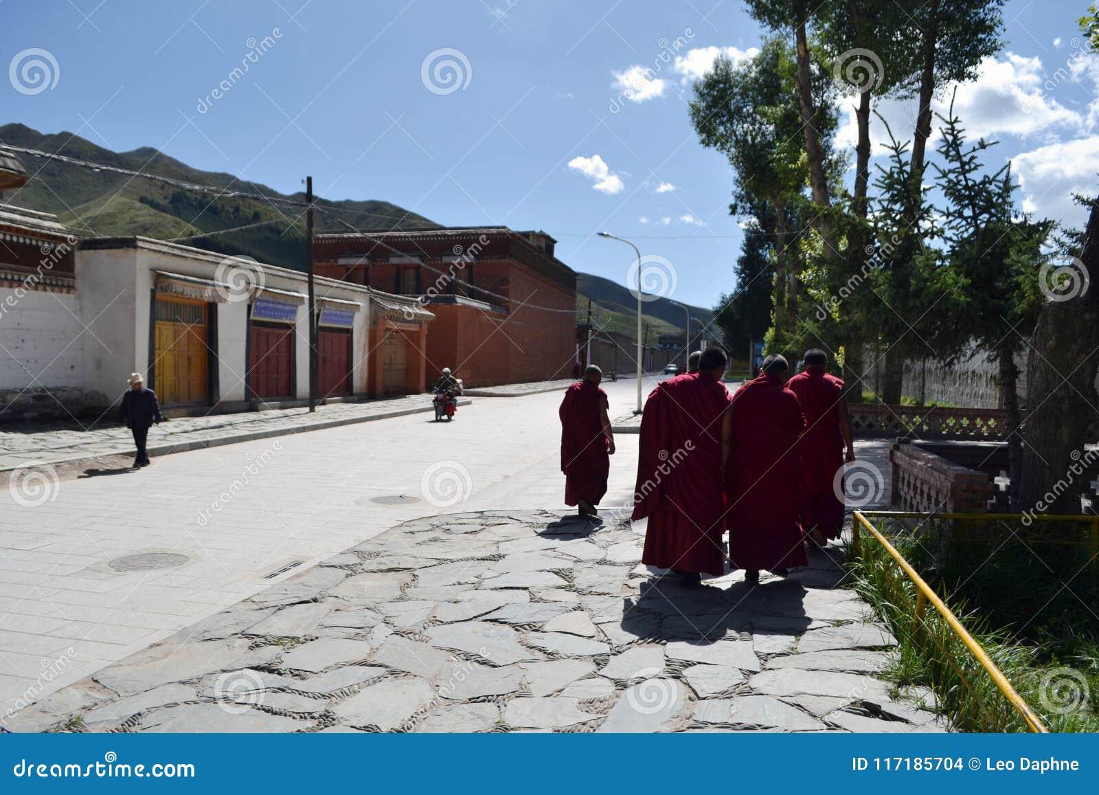 在拉卜楞附近的生活在夏河, Amdo西藏,中国 修士是e
