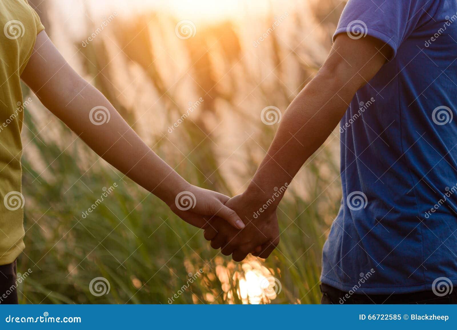 在握手和走在公园的爱的年轻夫妇在太阳期间