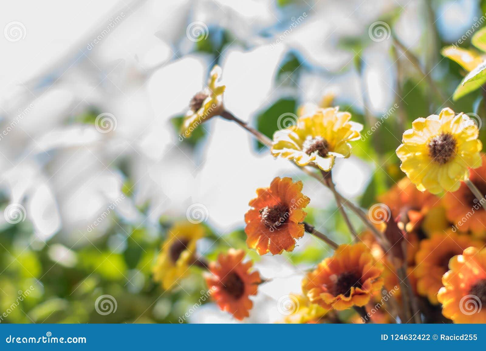 在摘要被弄脏的背景的鲜花
