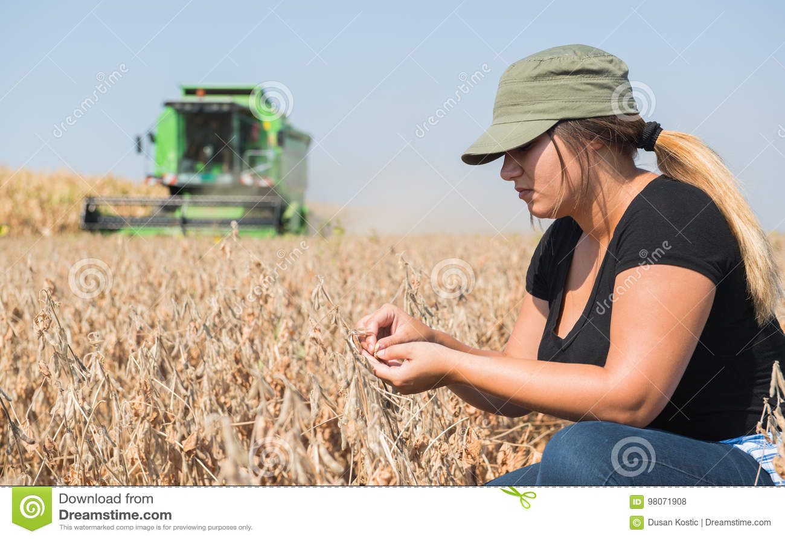 年轻在收获期间的农夫女孩examing的大豆植物