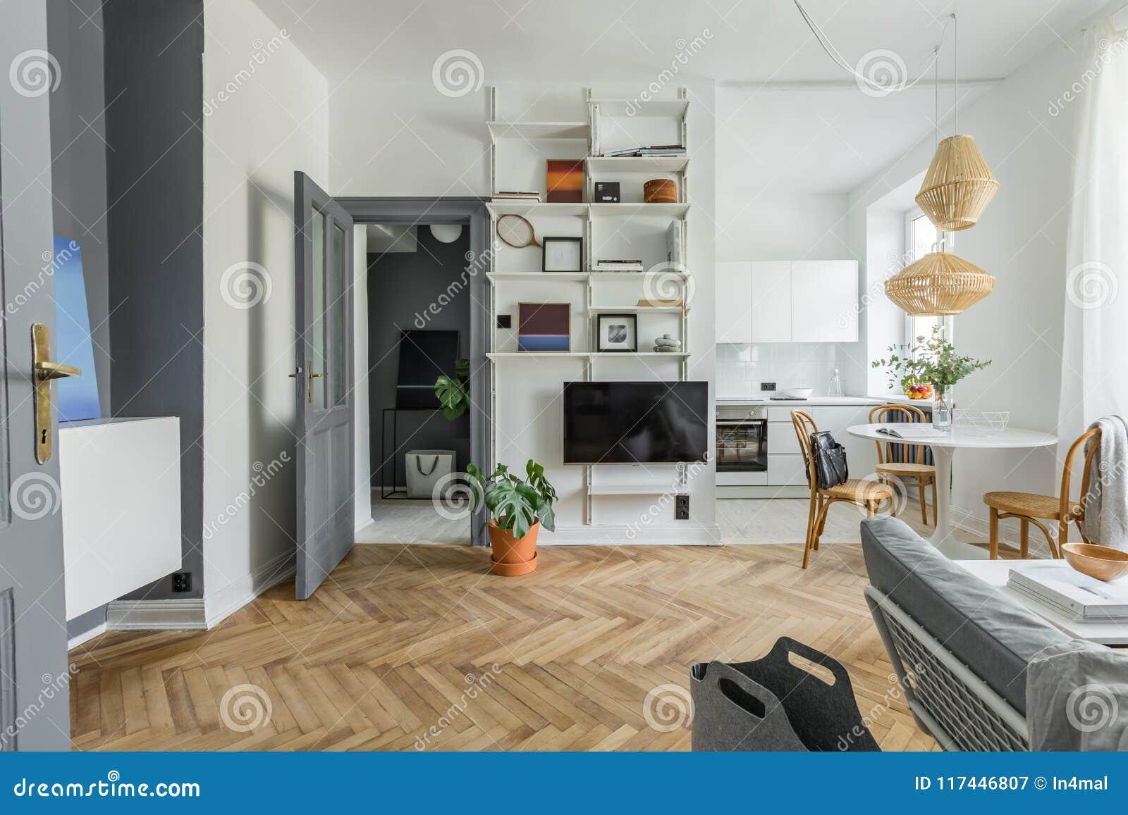 在斯堪的纳维亚样式的公寓