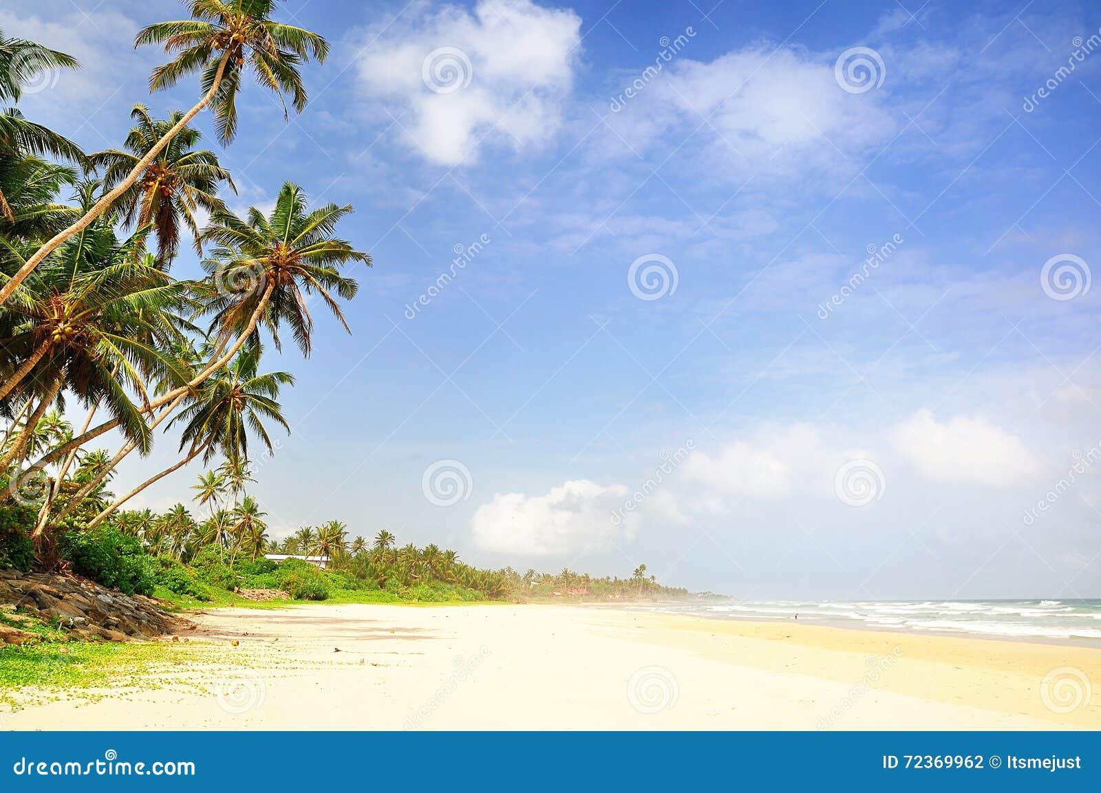 在斯里兰卡的海滩