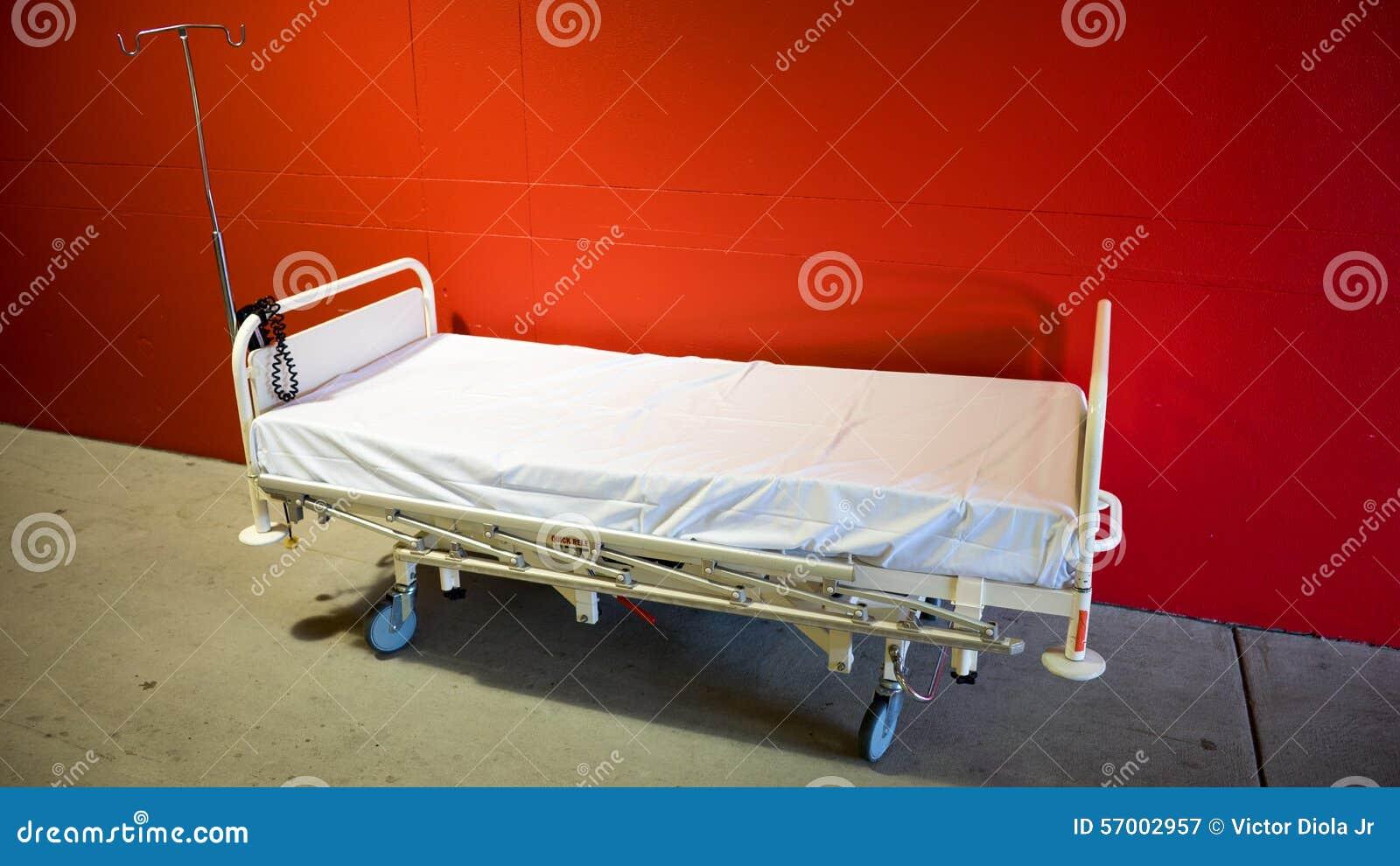 在新出生的s附近供绿色医院小母亲住宿