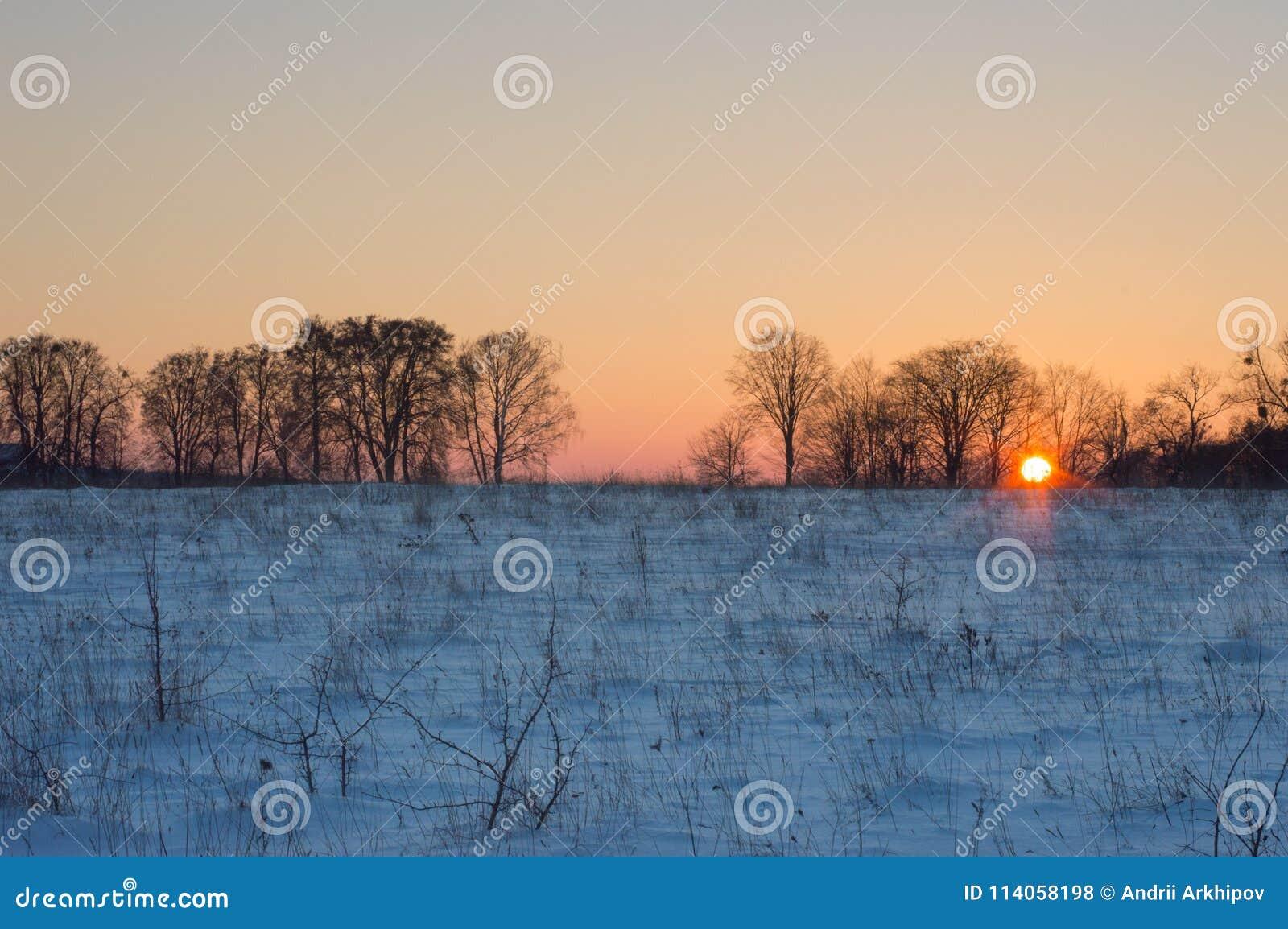 在日落前的片刻