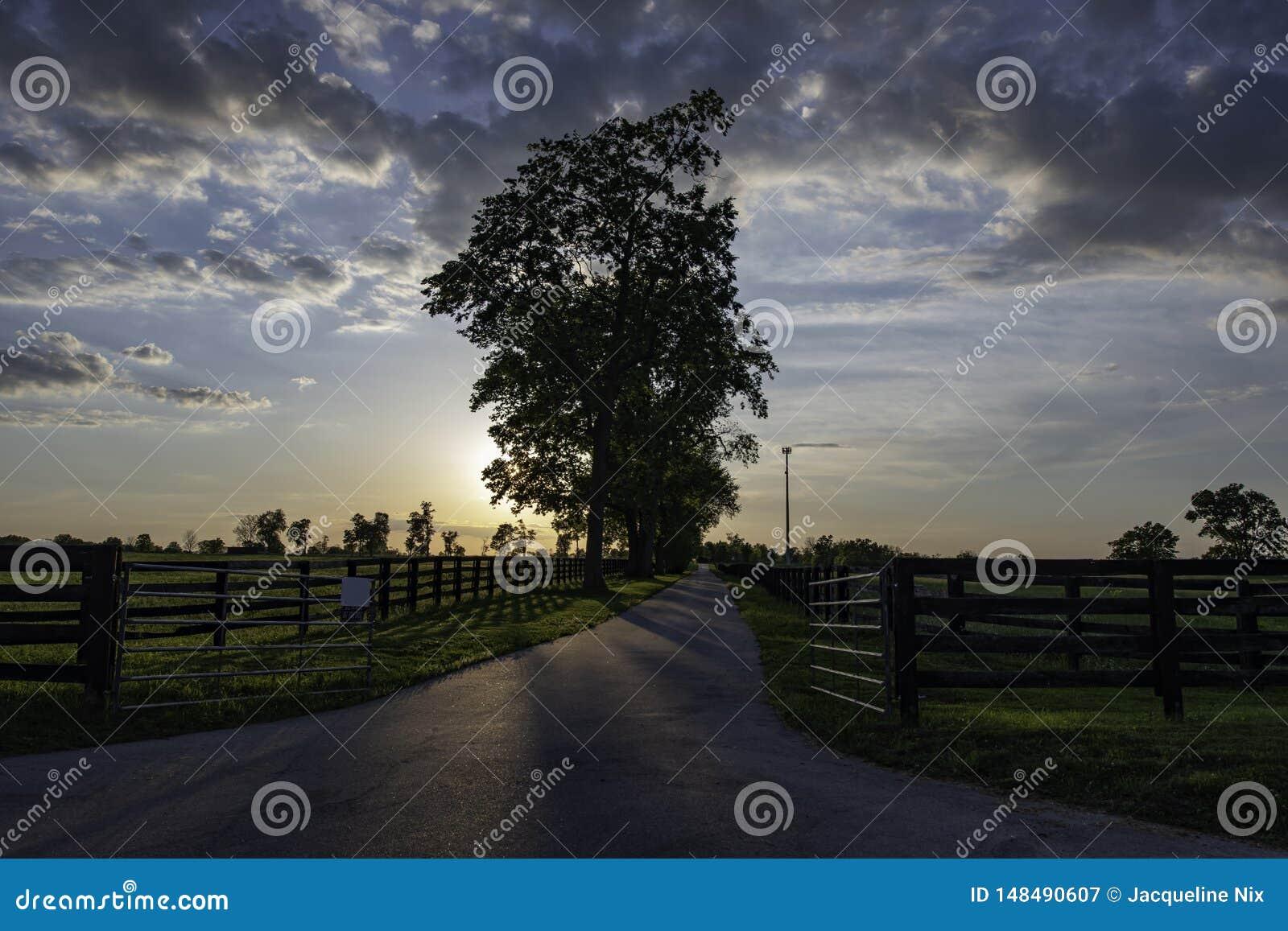 在日落的国家车道