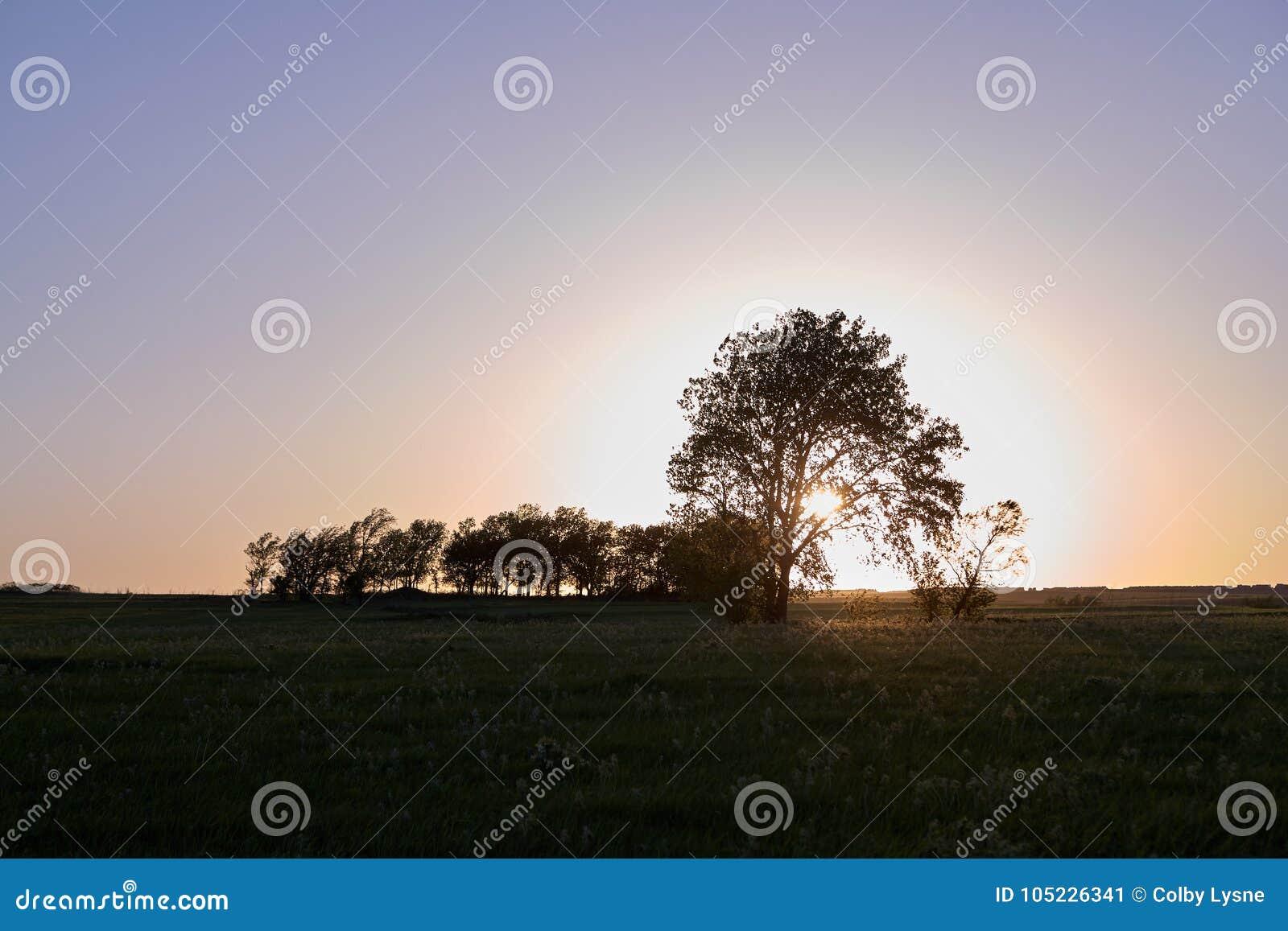 在日落的平静的农村场面在火石小山,美国
