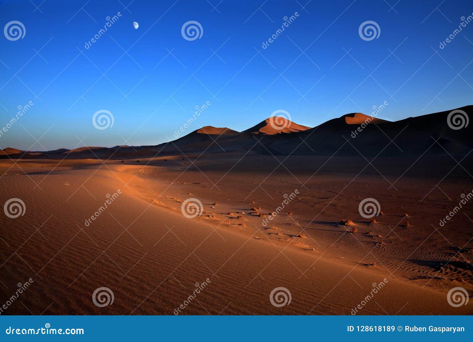 在日落的美好的沙漠风景