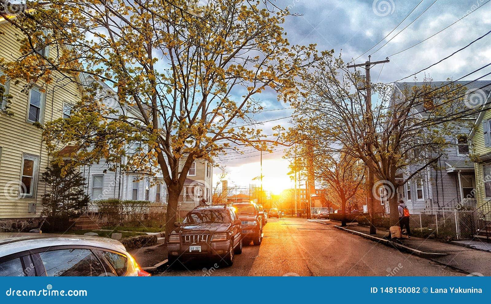 在日落的街道视图