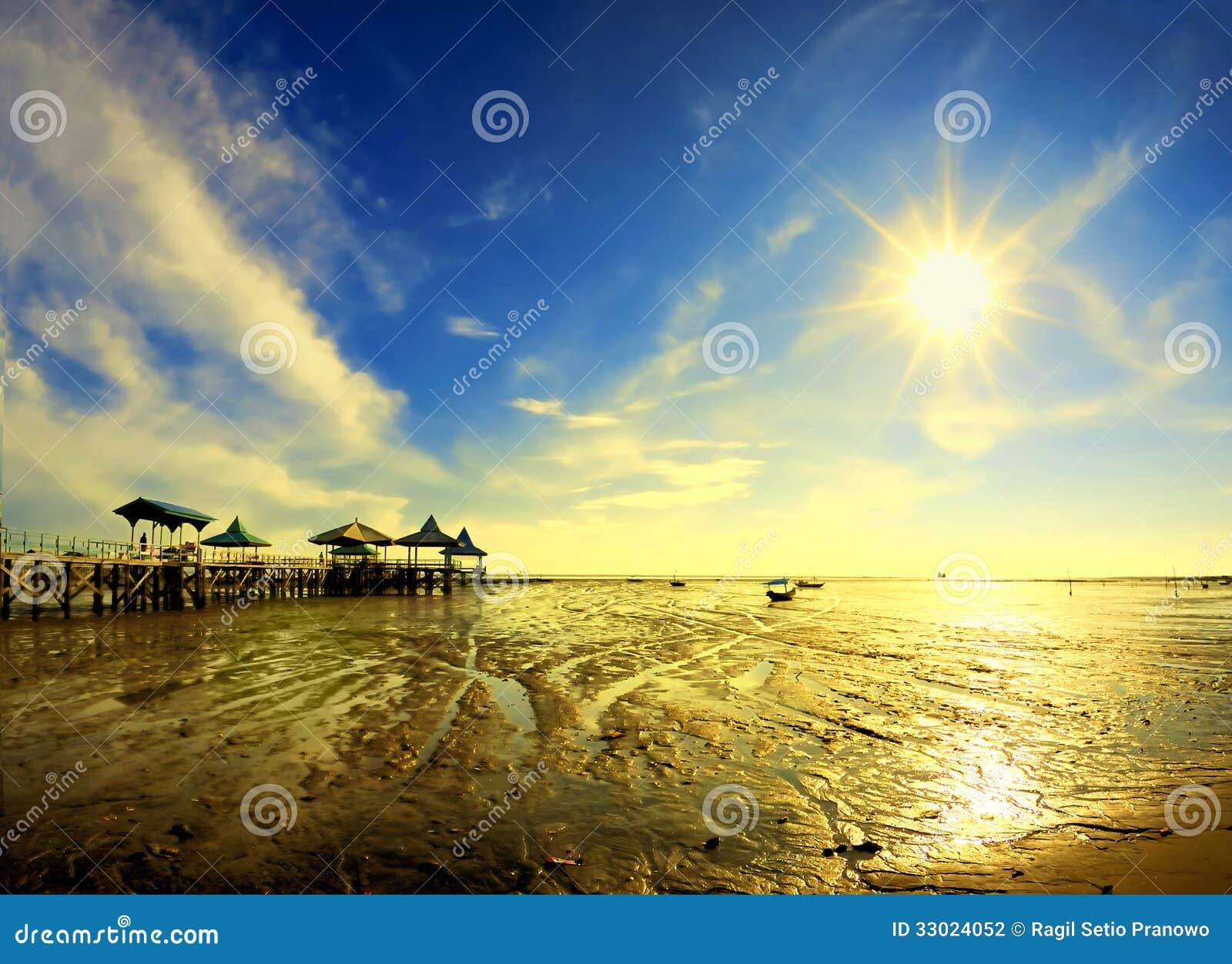 在早晨的太阳星在后退海岸图片