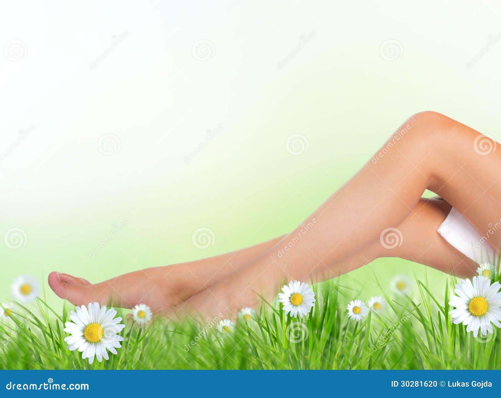 长的俏丽的妇女腿