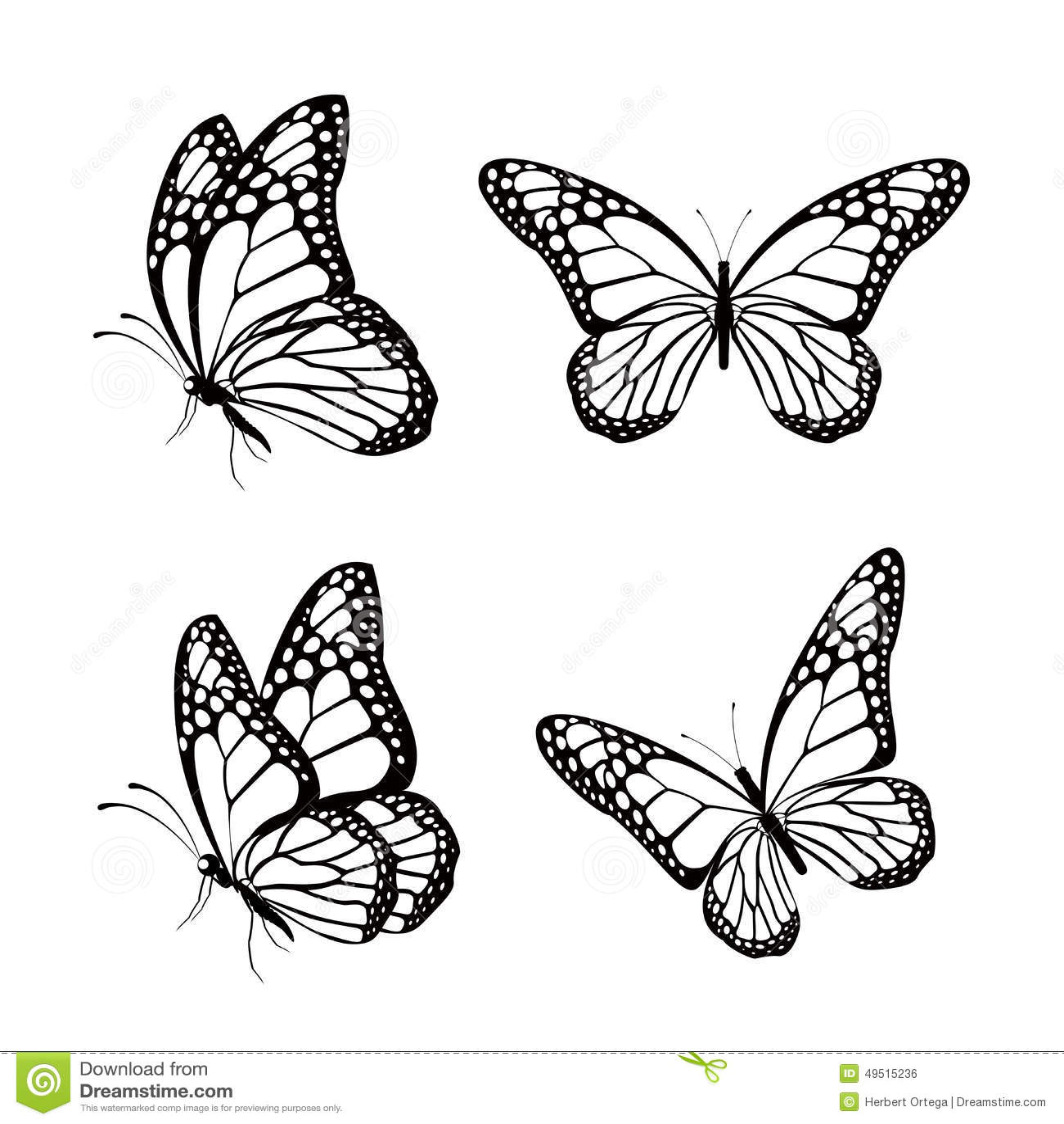 亚州情色蝴蝶逼_在春天隔绝的套现实五颜六色的蝴蝶