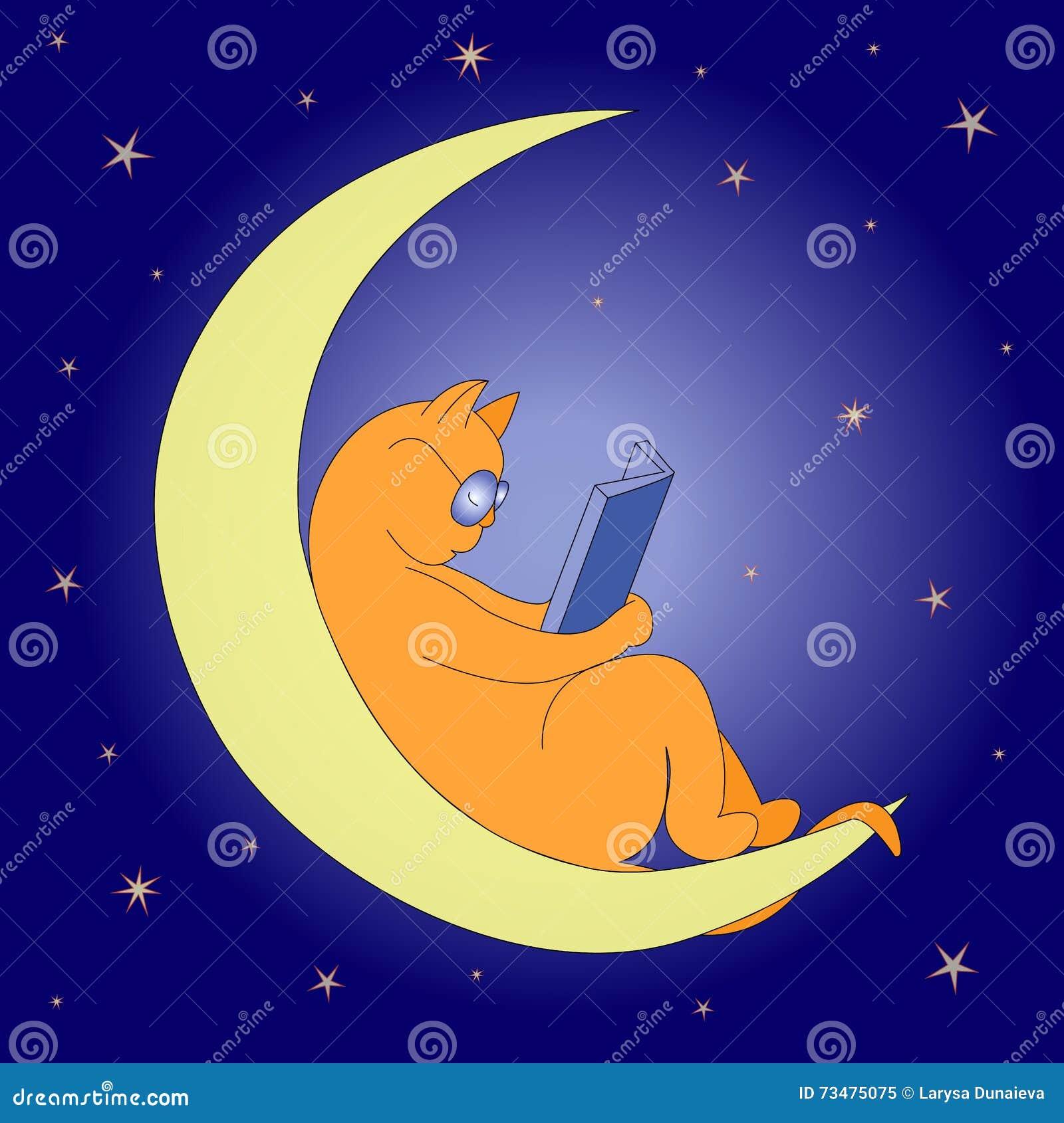 在月亮的猫