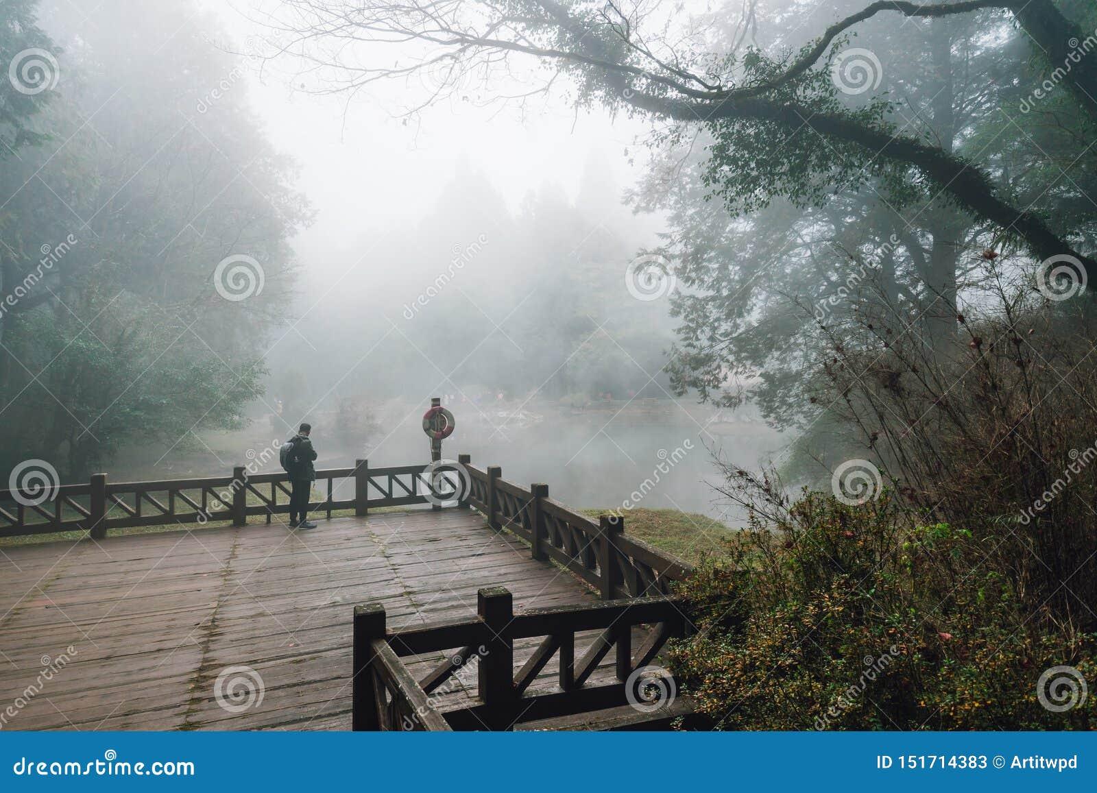 在木平台有雪松的和雾的男性旅游身分在背景中在森林里在阿里山