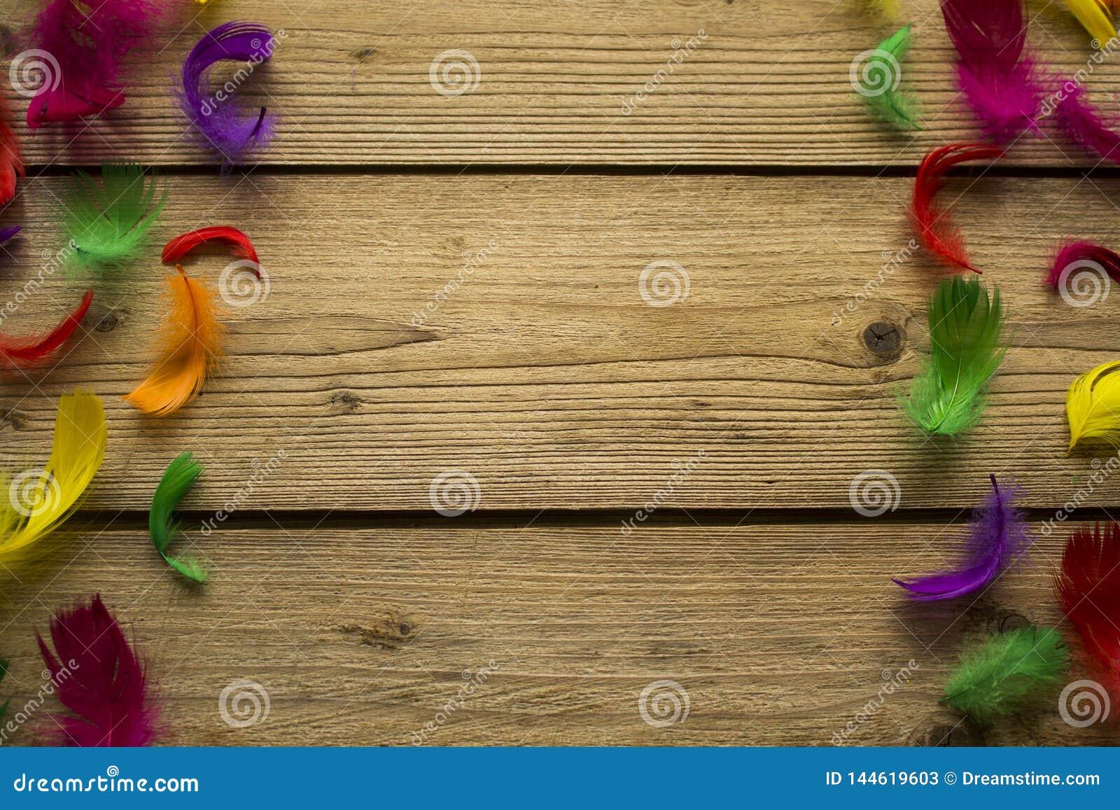 在木桌上的五颜六色的羽毛