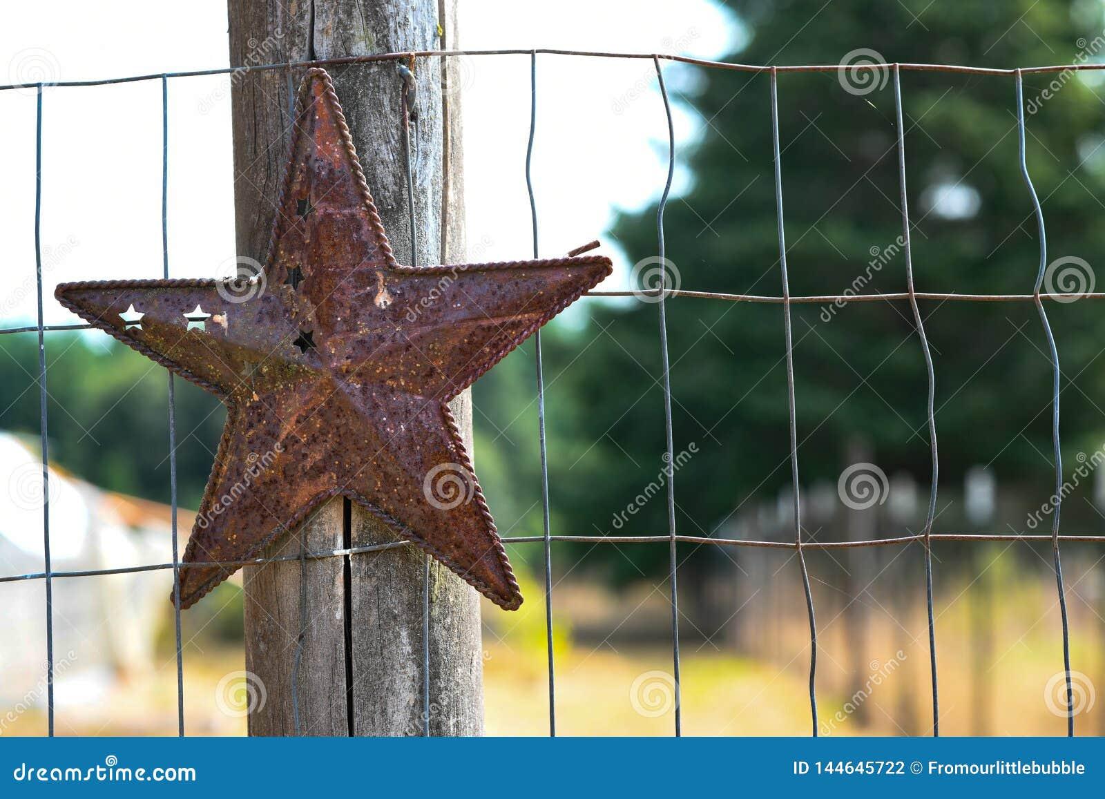 在木篱芭岗位的金属星