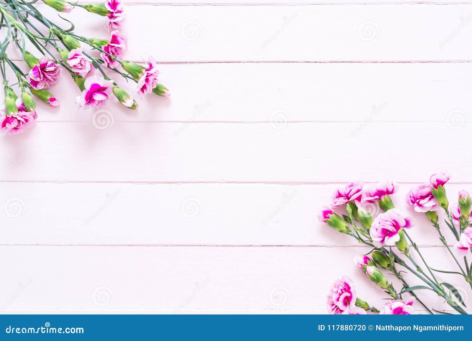 在木背景的桃红色春天花