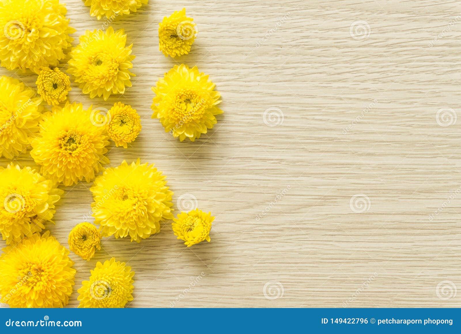在木背景的黄色菊花,自由空间
