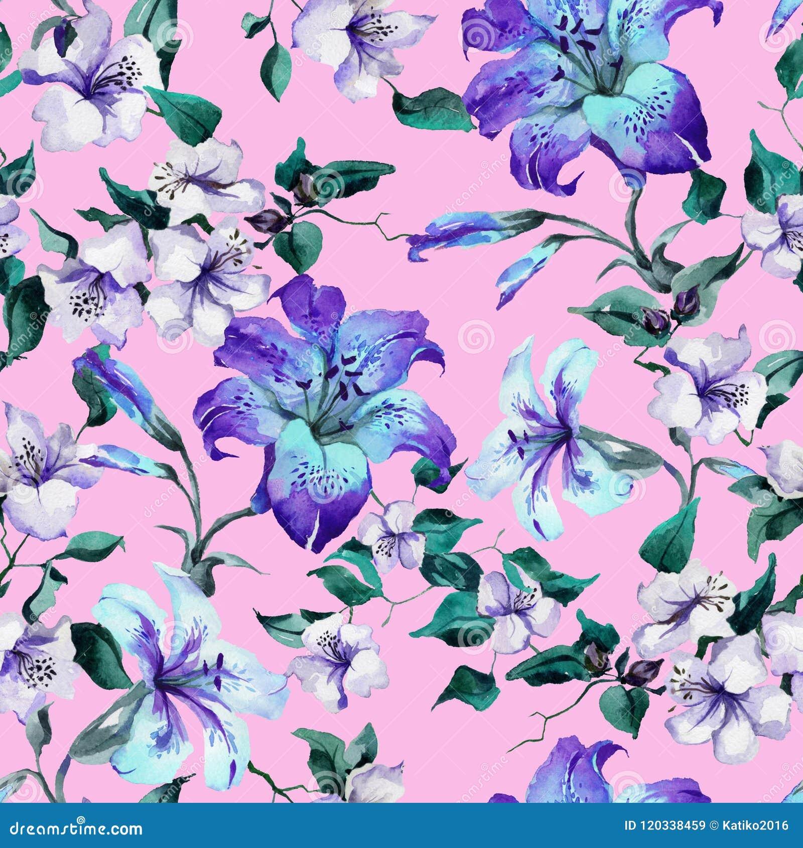 在枝杈的美丽的卷丹在桃红色背景 在生动的蓝色,紫色颜色的无缝的花卉样式 多孔黏土更正高绘画photoshop非常质量扫描水彩