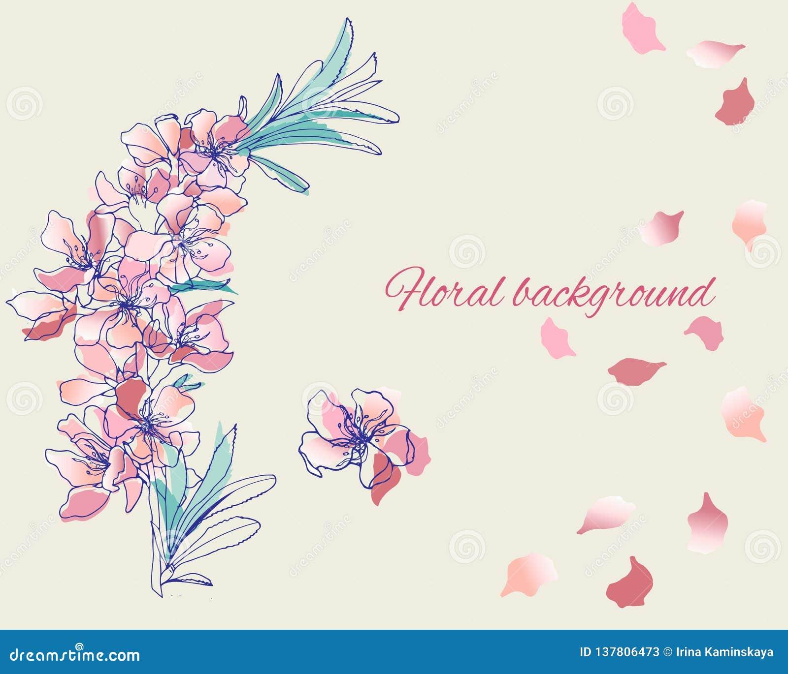 在柔和的粉色的被绘的传染媒介花 春天等高花水彩