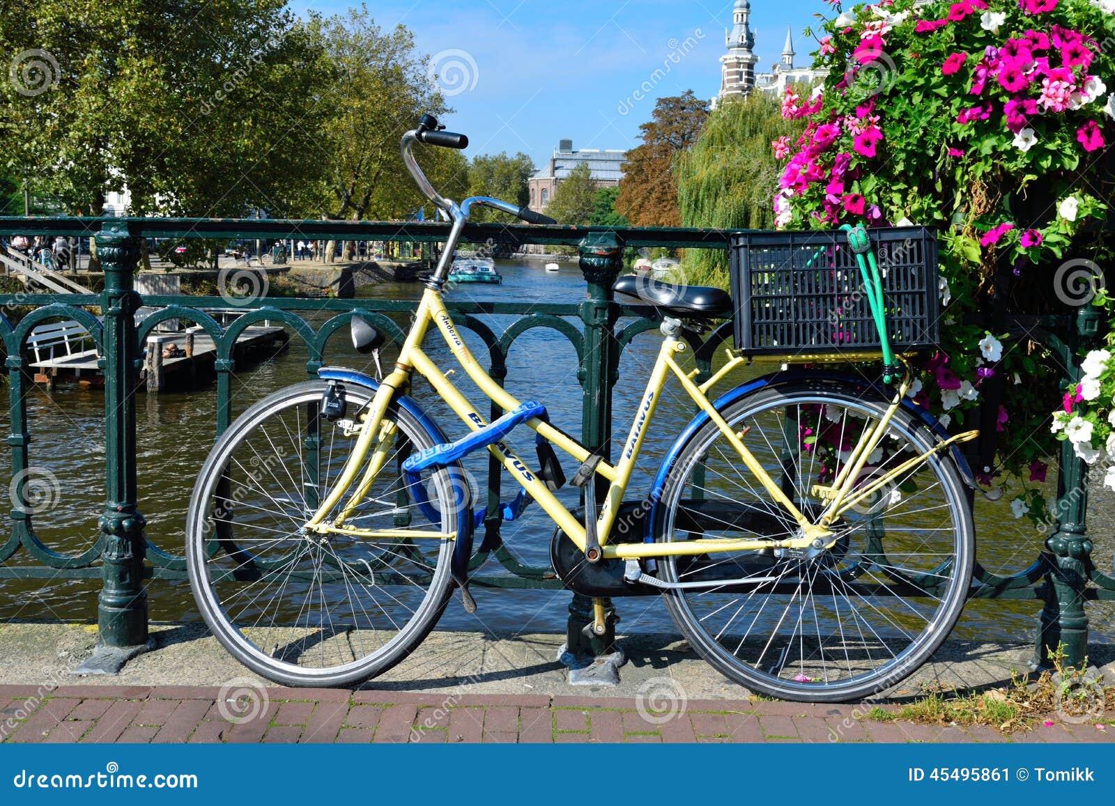 在桥梁的美丽的阿姆斯特丹运河自行车