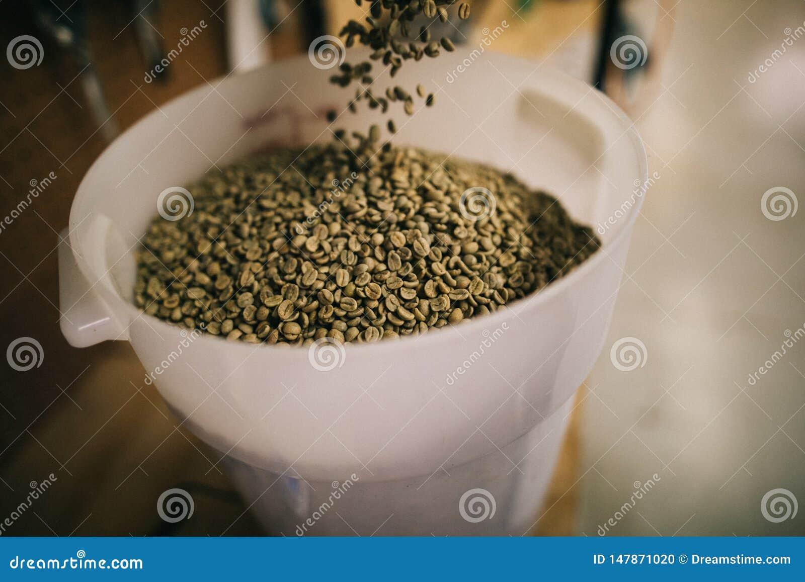 在桶的未加工的咖啡豆