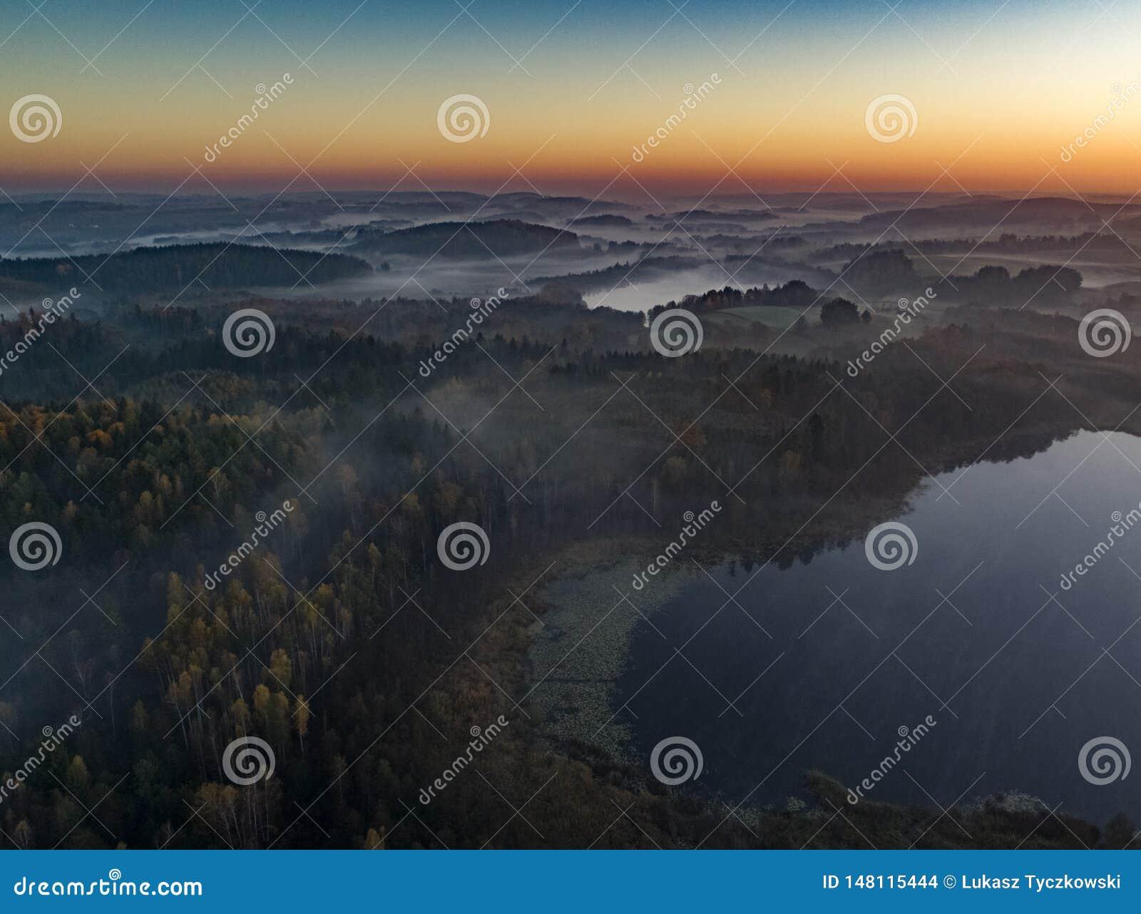 在森林和湖-寄生虫视图的日出