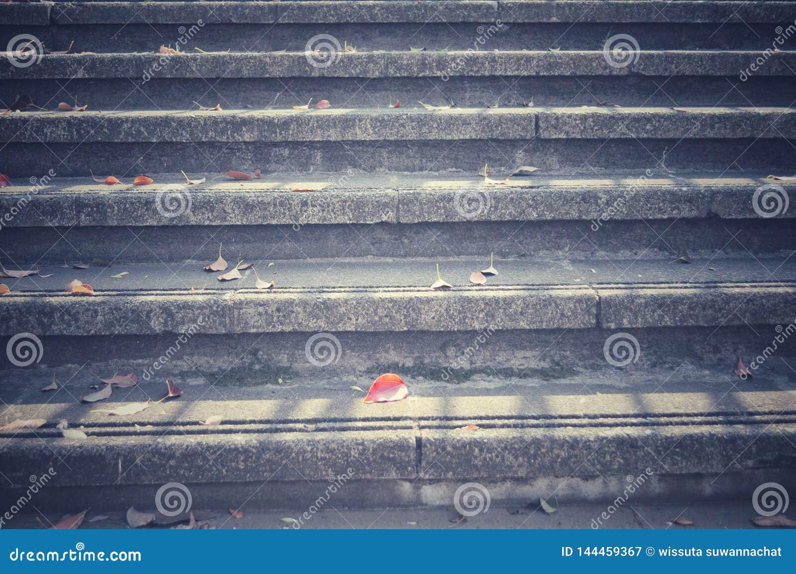 在楼梯下落的秋叶