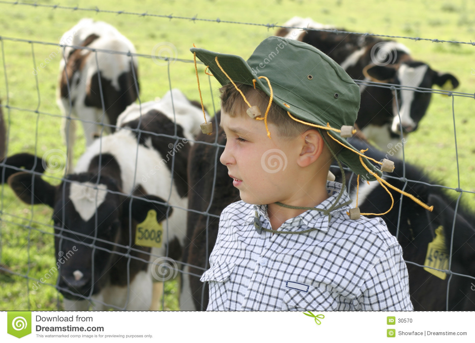 在母牛乳牛场场主年轻人之中