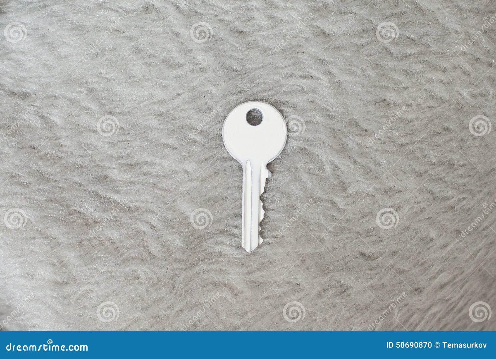 Download 在毛皮的白色钥匙 库存照片. 图片 包括有 设计, 空白, 颜色, 纹理, 材料, 超现实主义, 对象, 关键字 - 50690870