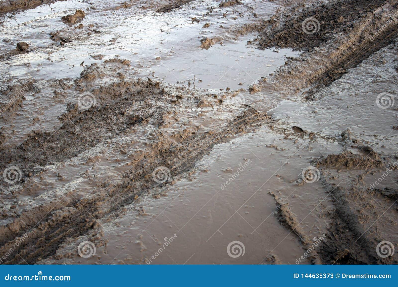 在水坑泥的轮胎轨道