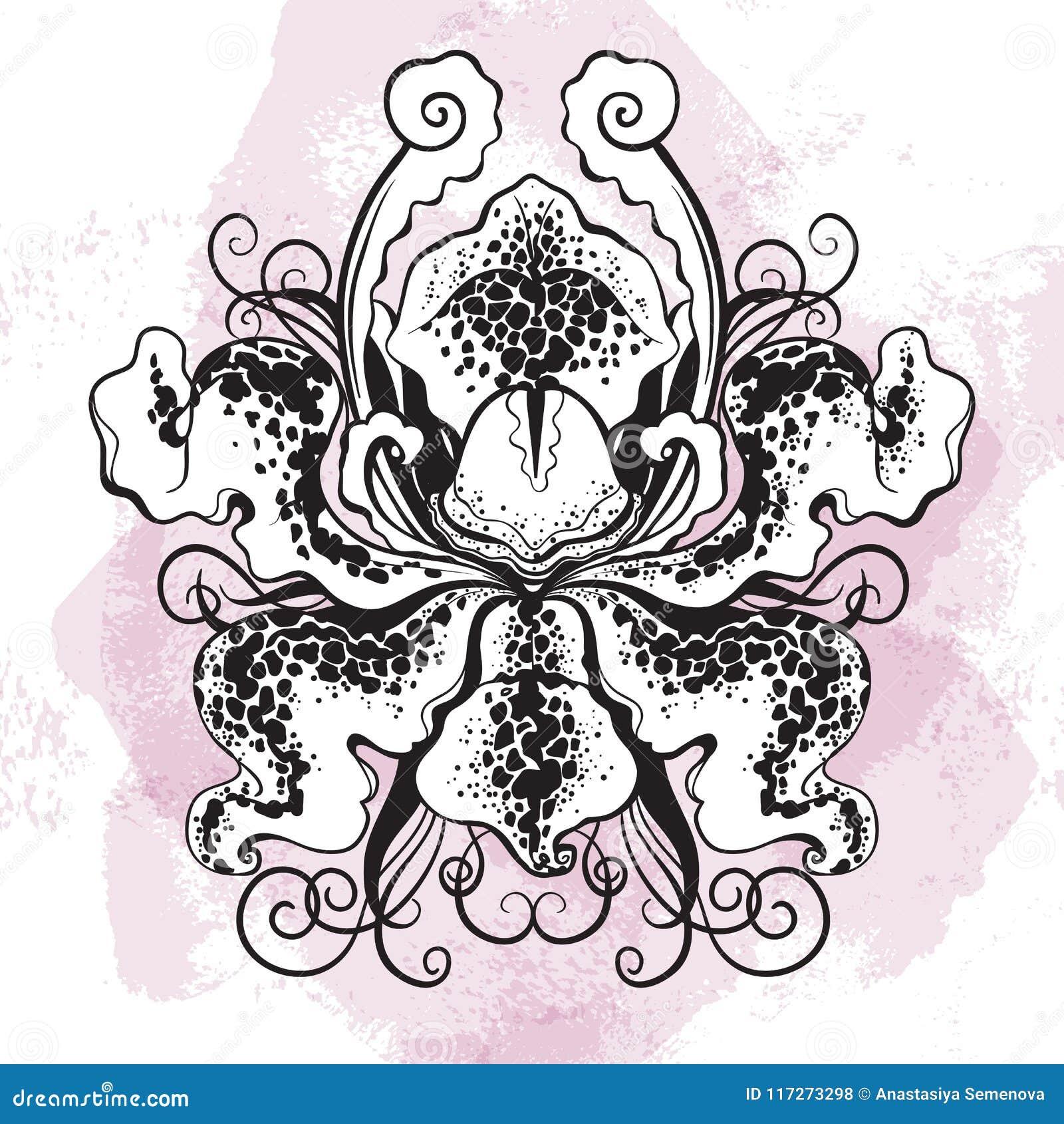 在水彩背景的Beauyiful图表orhid花 传染媒介手拉的漂泊例证 Tattwo艺术,东方主题