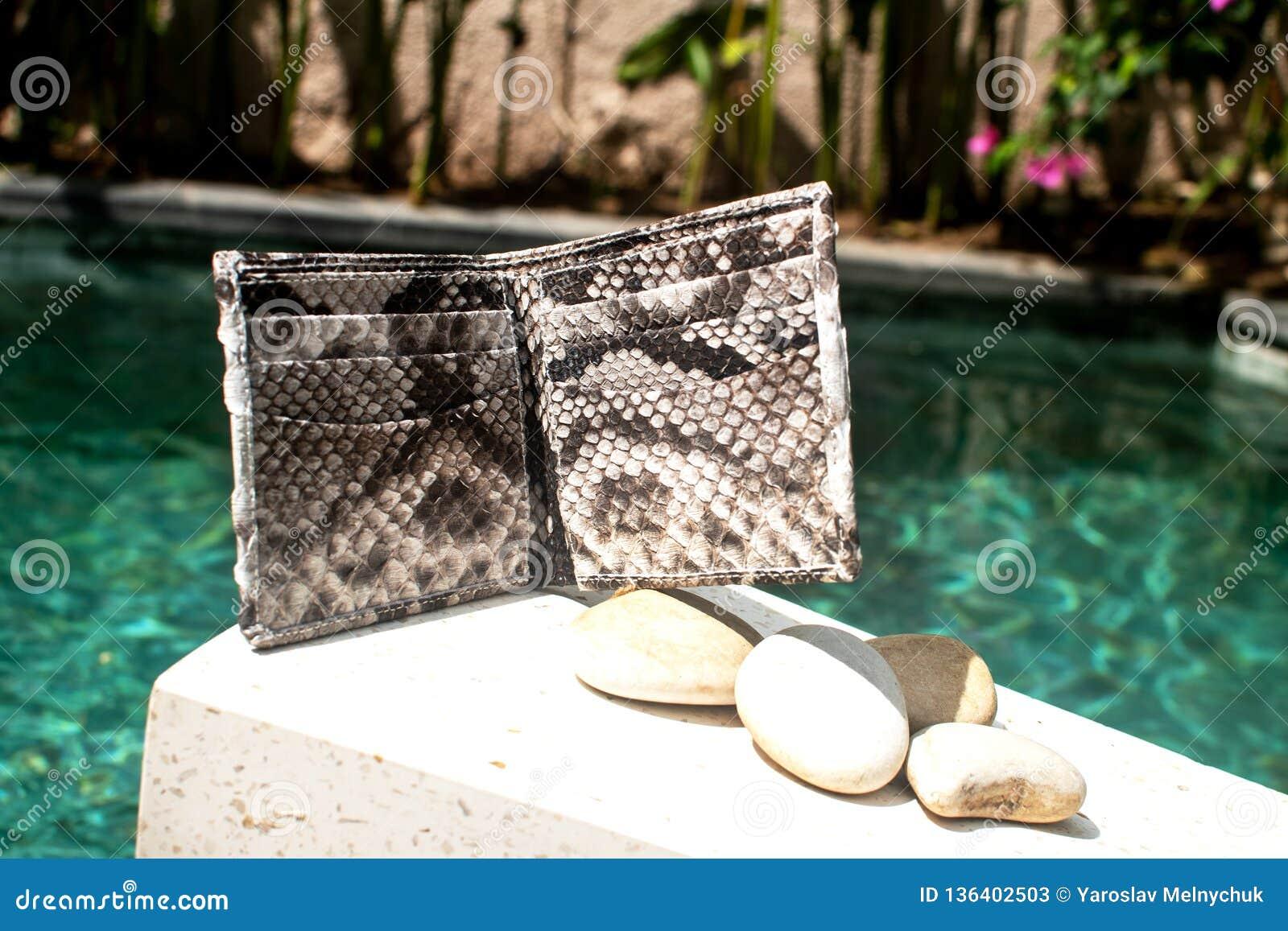 在水池背景的现代辅助部件 皮革snakeskin Python钱包 时兴的自然Python 对于男人和妇女 里面