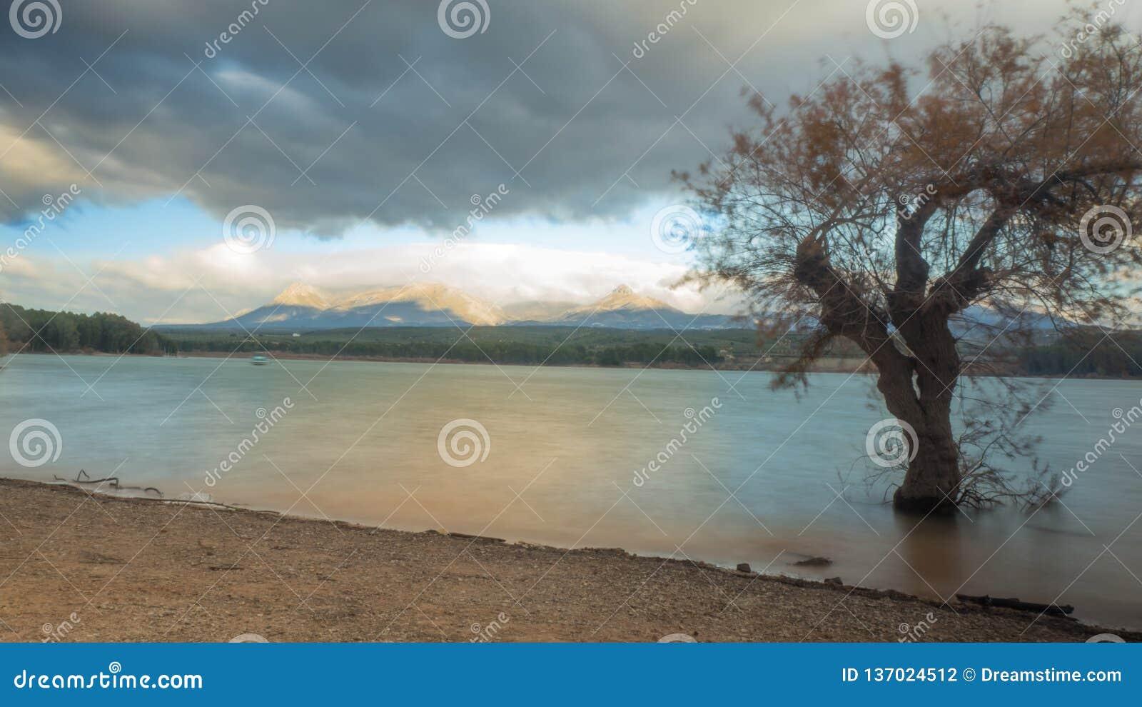 在水的CALMA EN EL阿瓜的安静