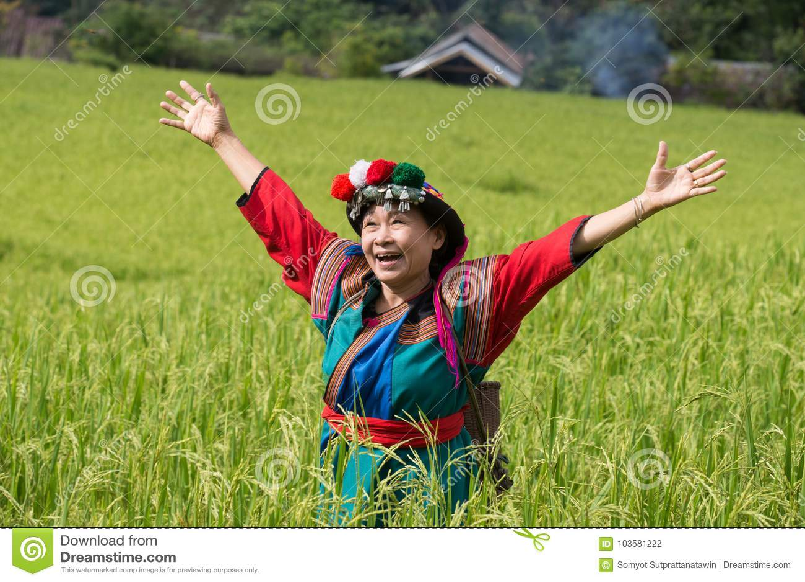 在水稻领域五颜六色的服装礼服的愉快的小山部落微笑