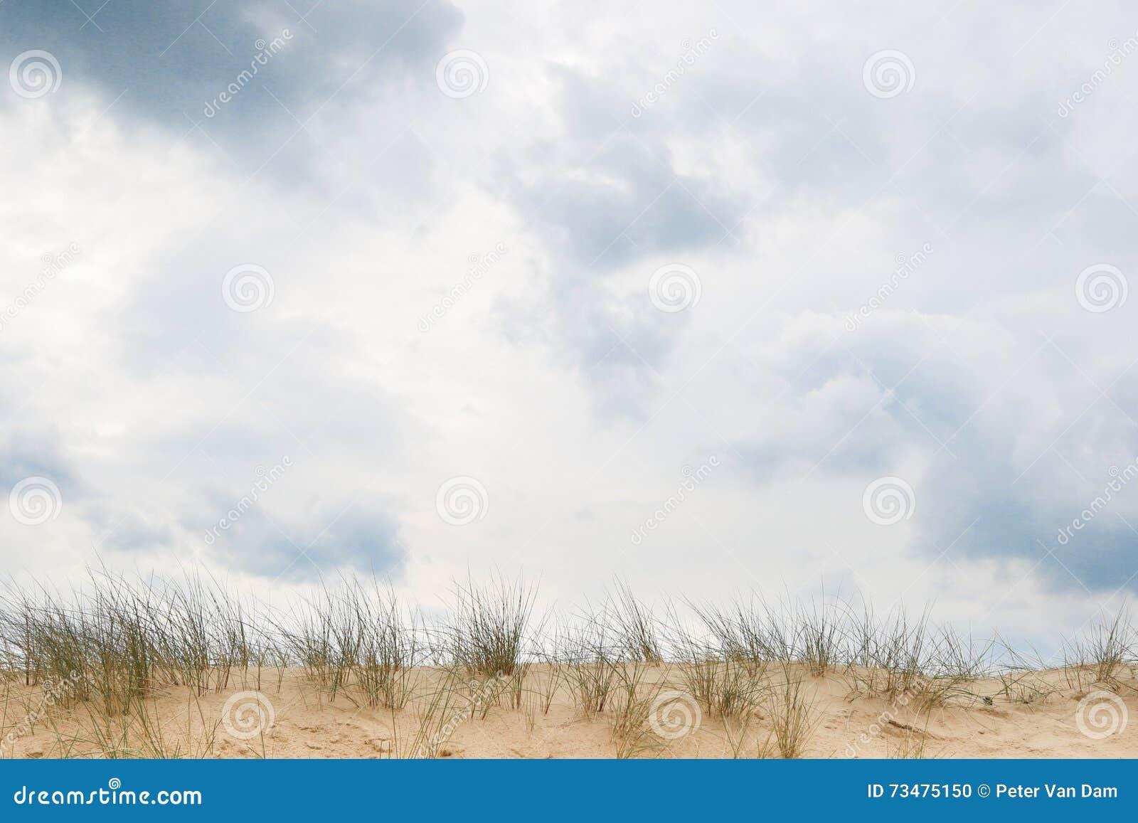 在沙丘外缘的多云天空