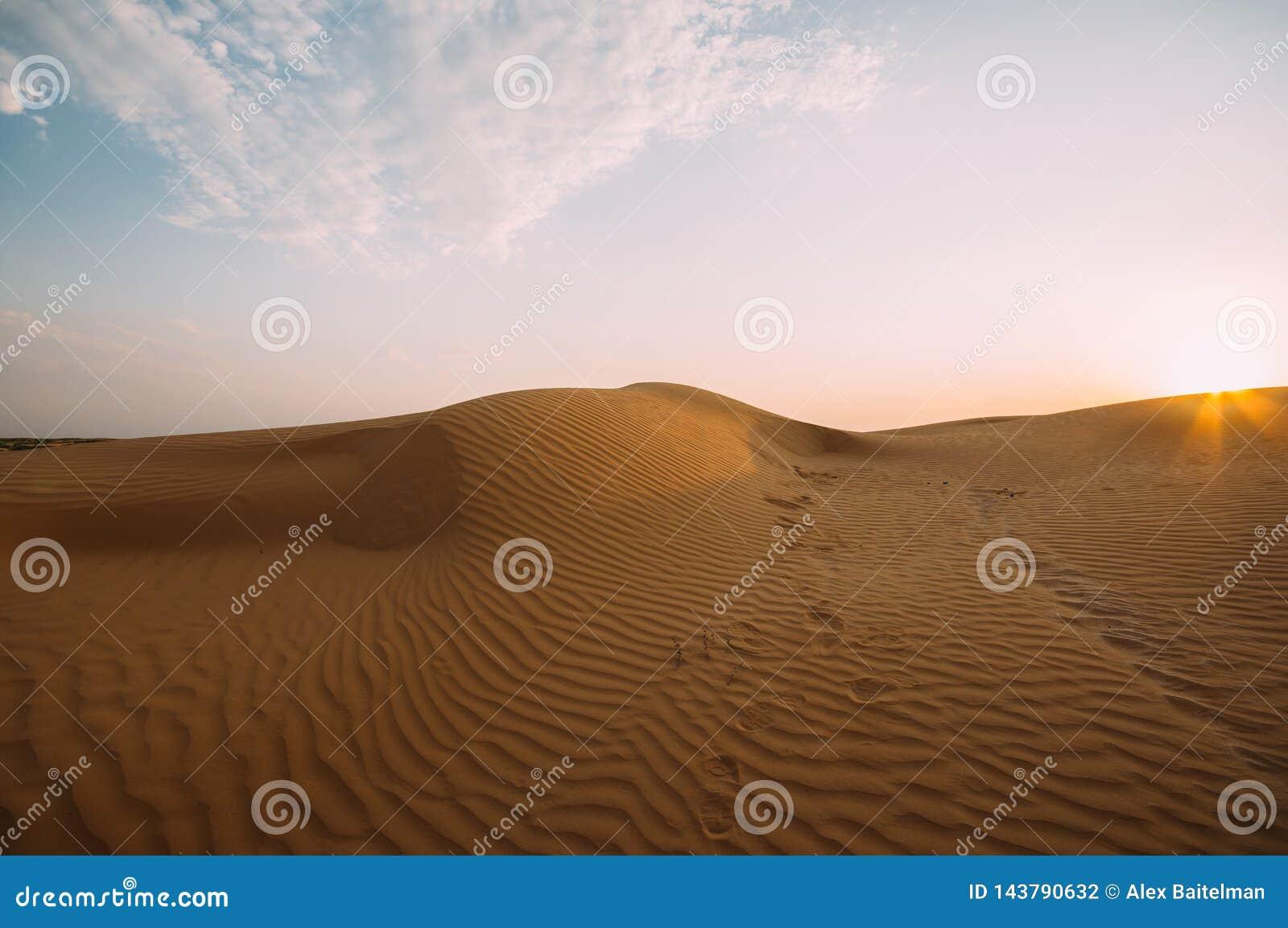 在沙子的人的脚印在沙漠