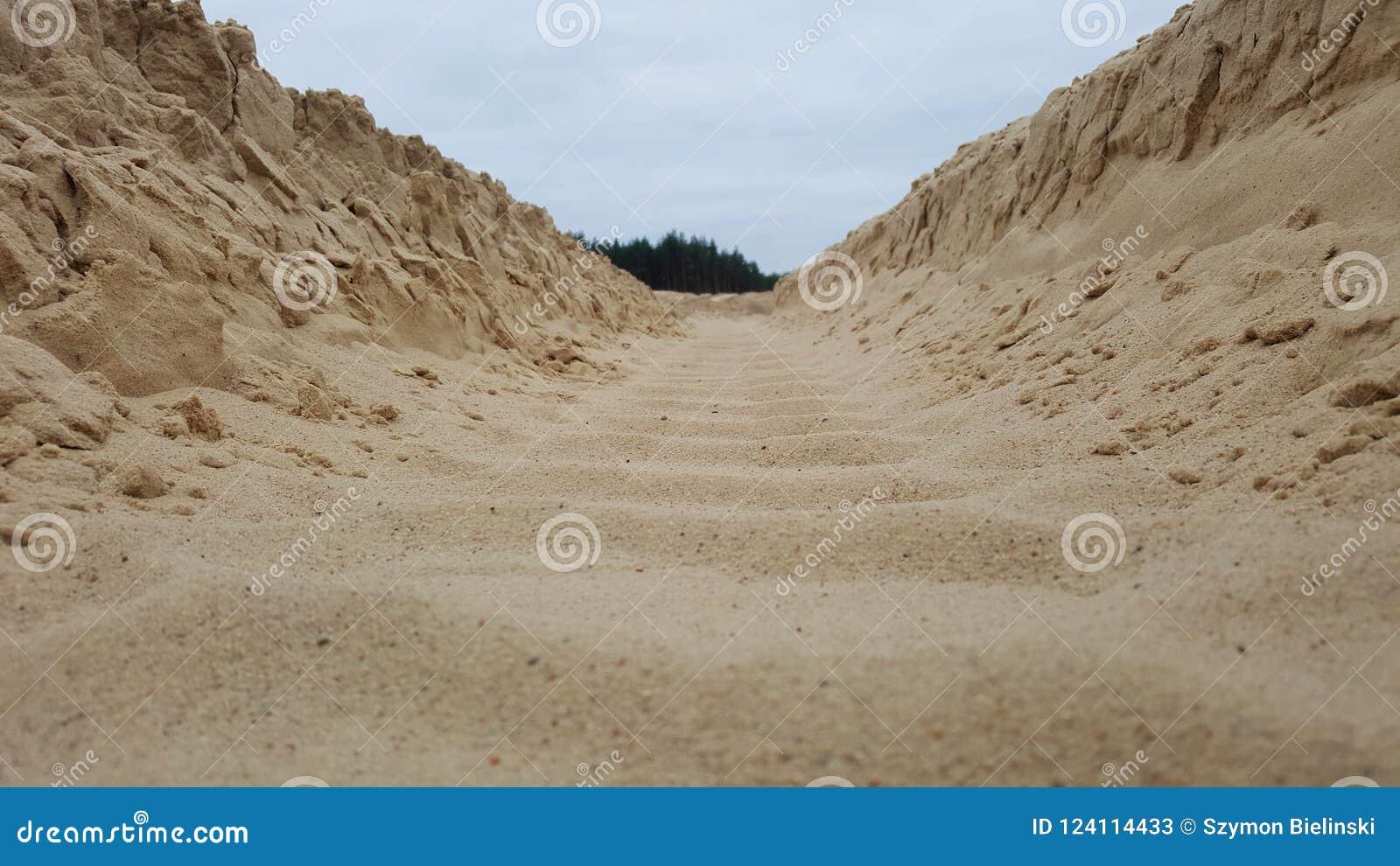 在沙子的轮子踪影