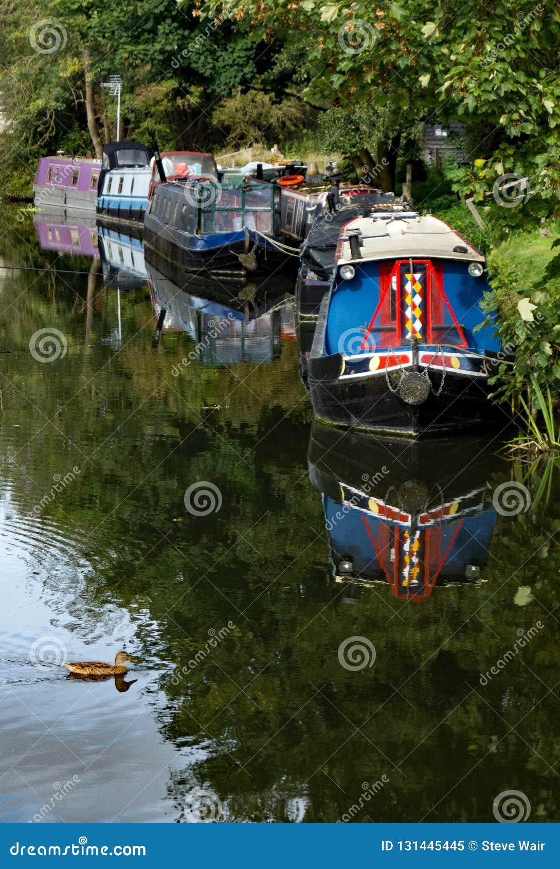 在河停泊的一个小组狭窄的小船Stort