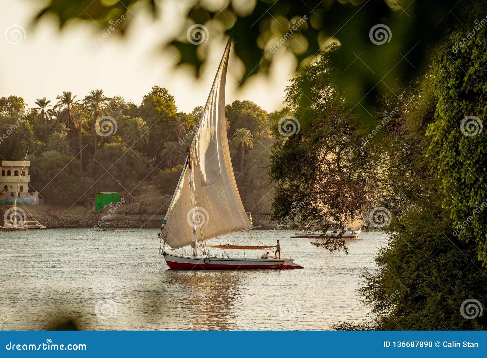 在河尼罗的传统Felluca小船在日落的卢克索埃及