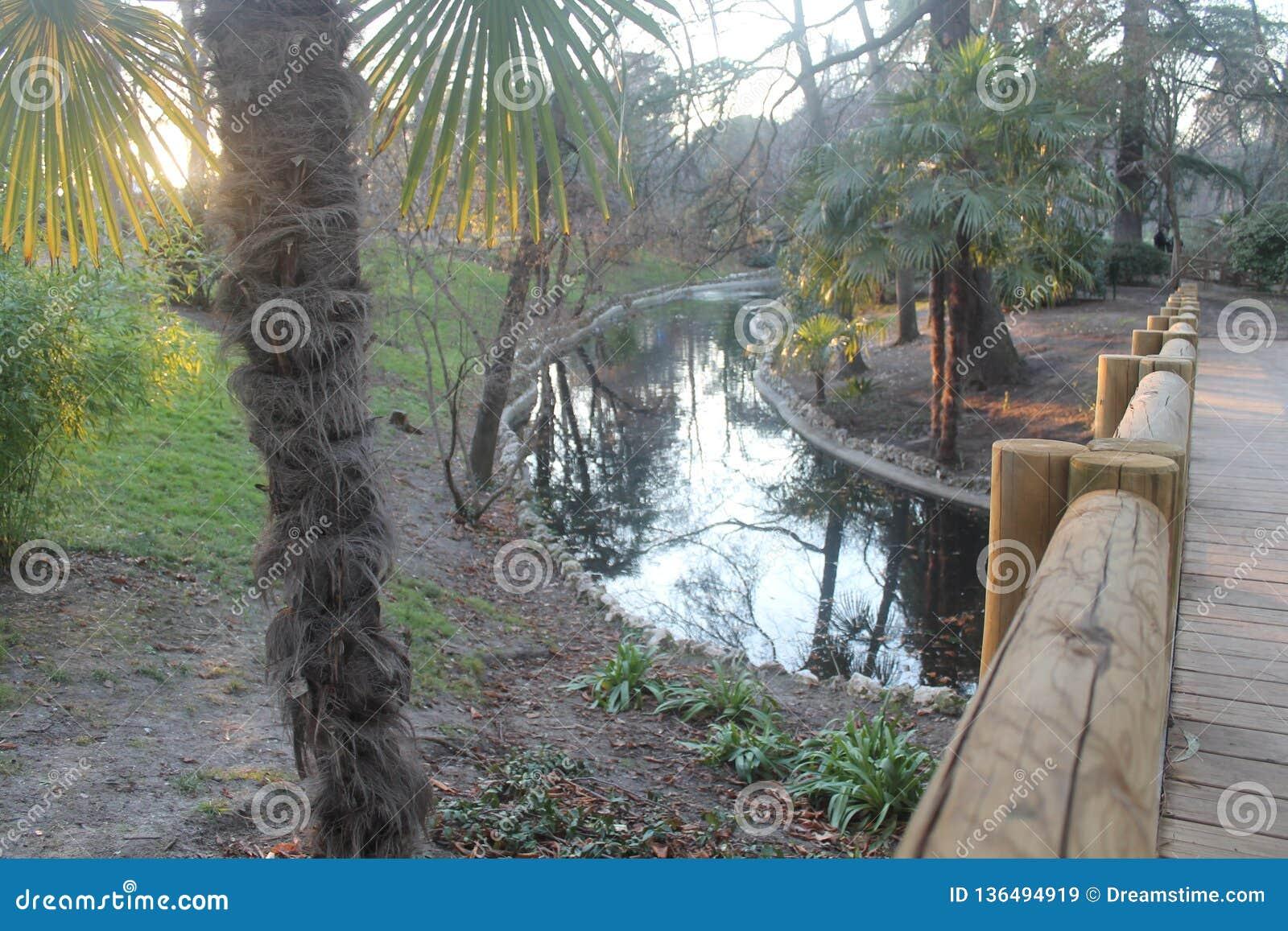 在河的木桥有日落光的