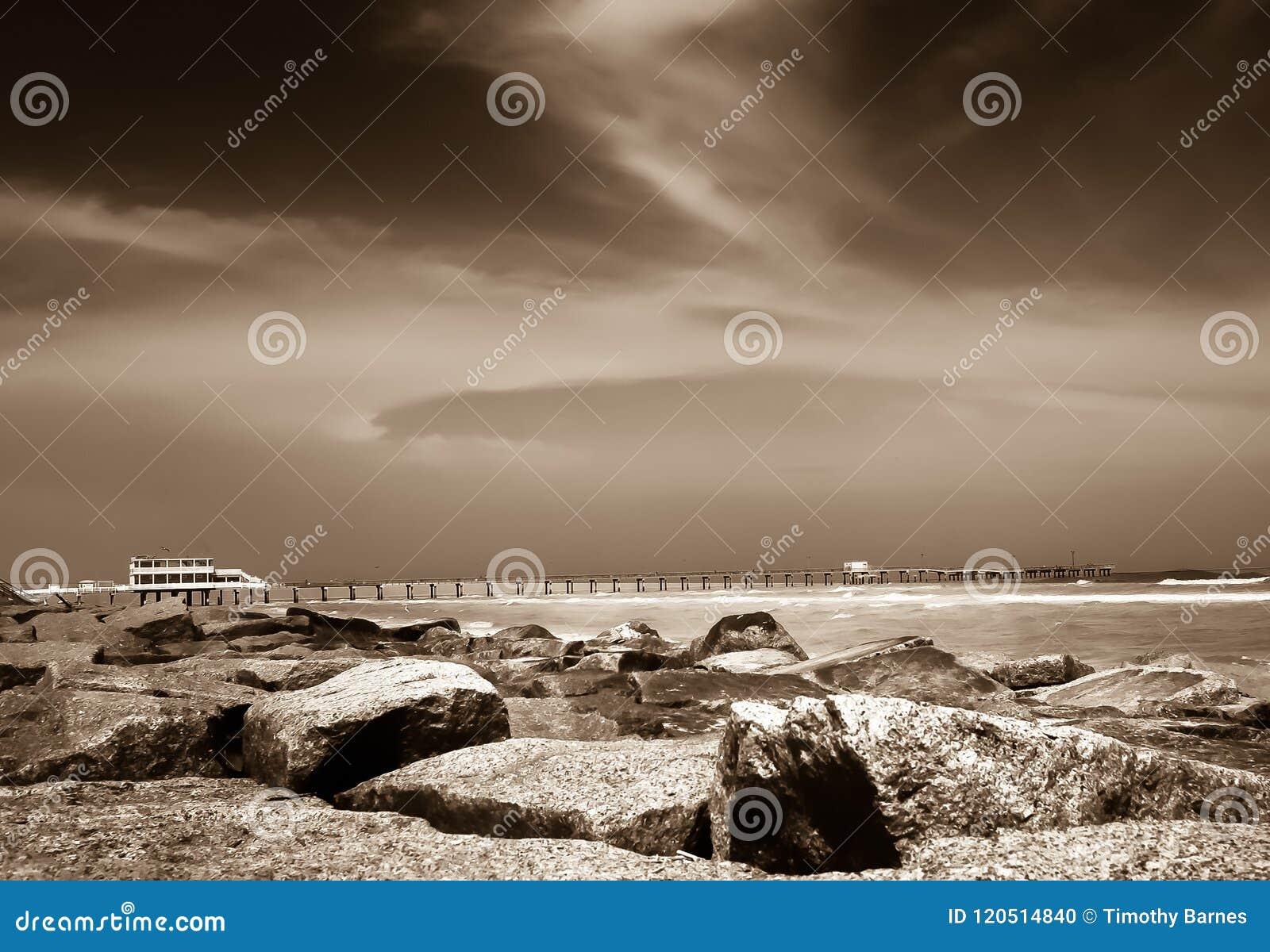 在海岸的低潮