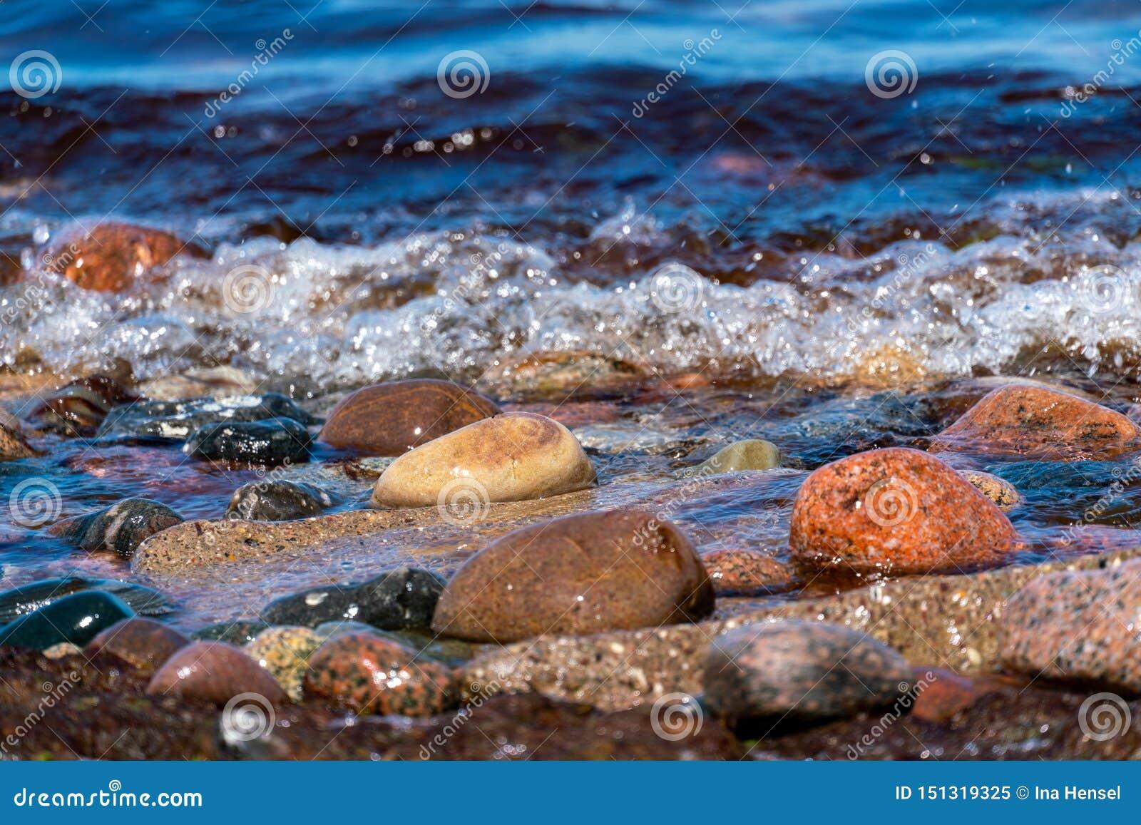 在海岸线的色的小卵石有水和波浪的