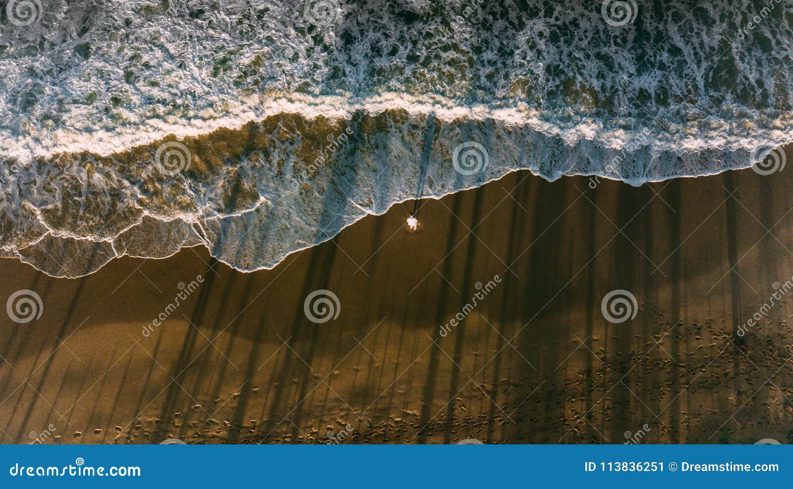 在海滩的一人逗留 从棕榈的波浪和阴影反射 黑暗