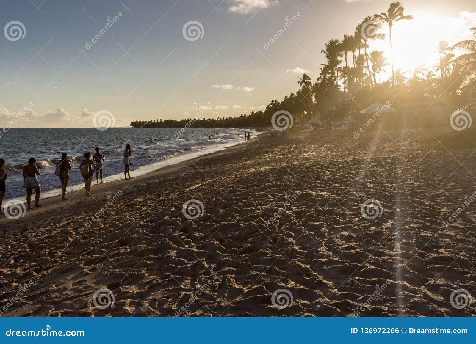 在海滩的惊人的日落