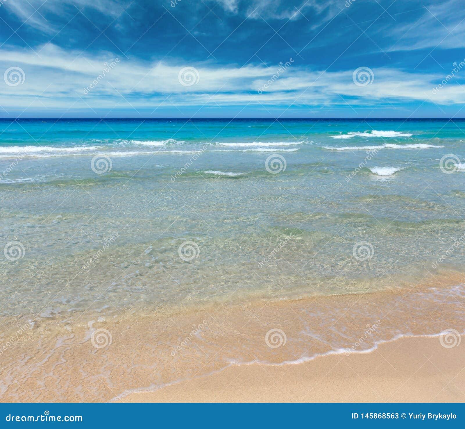 在海滩的海海浪