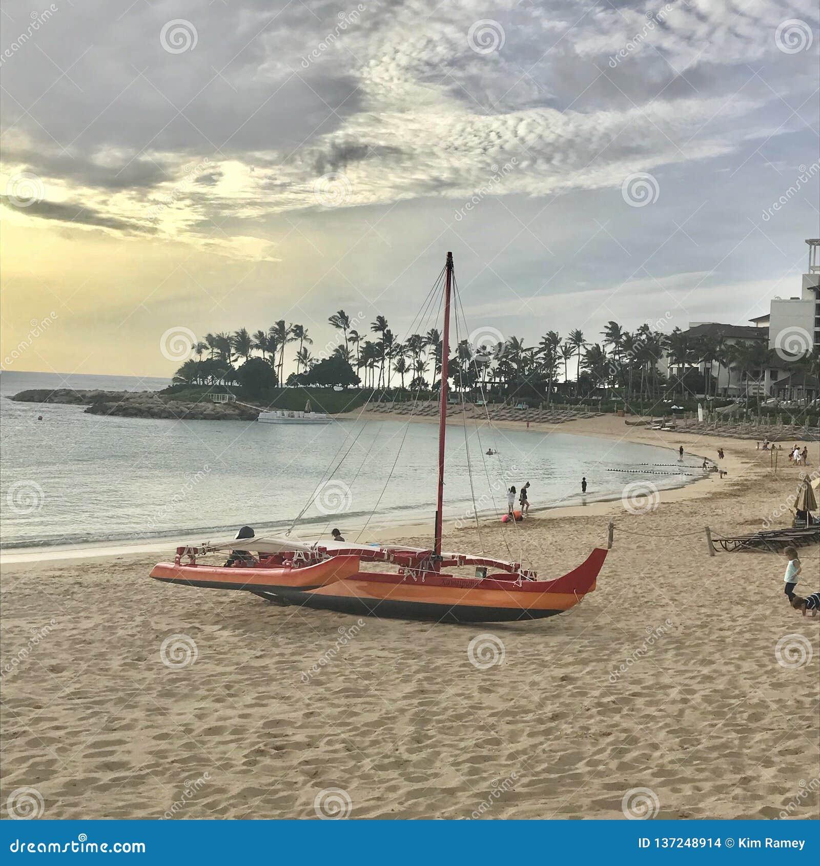 在海滩的筏在夏威夷